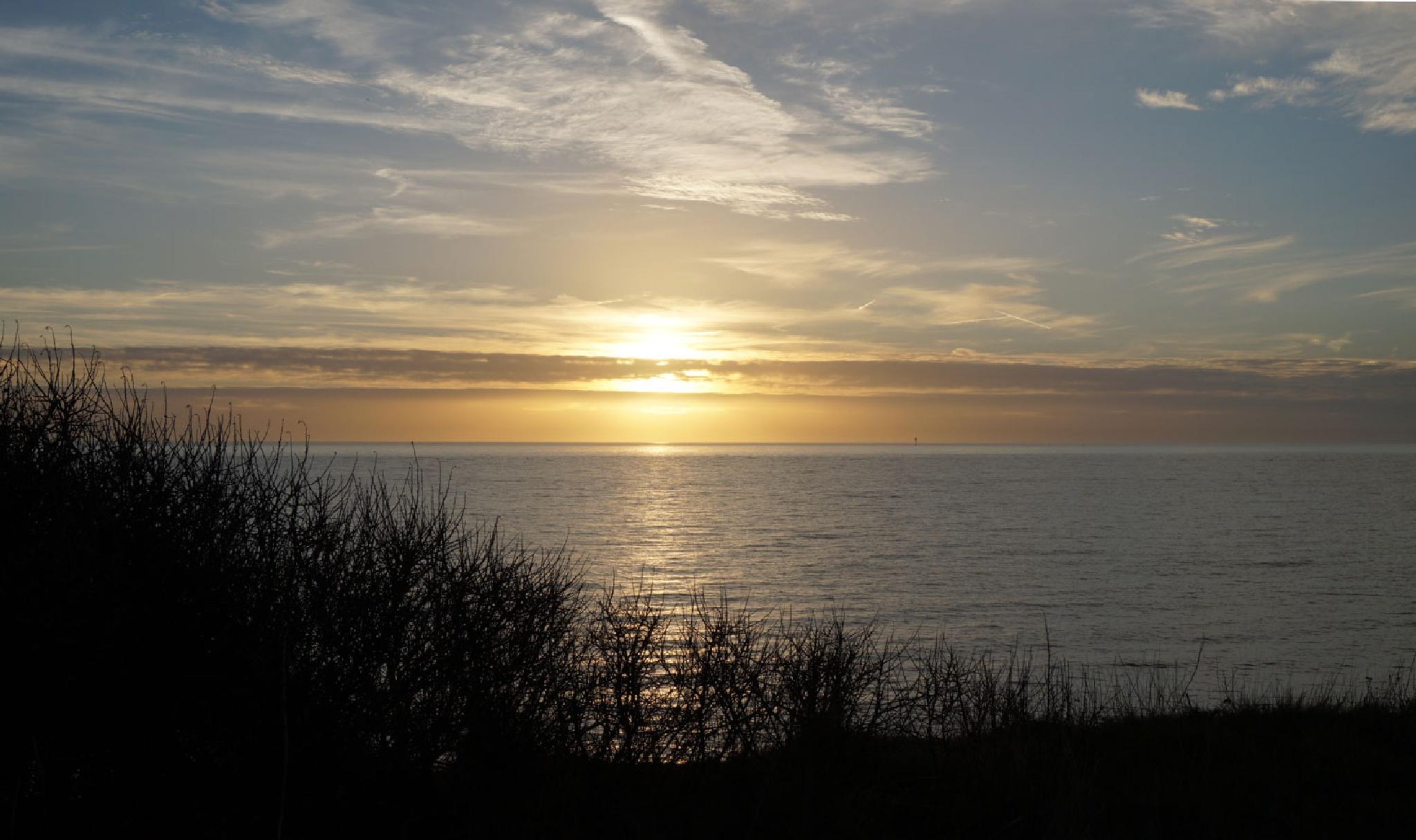afternoon sunset by vedvejen