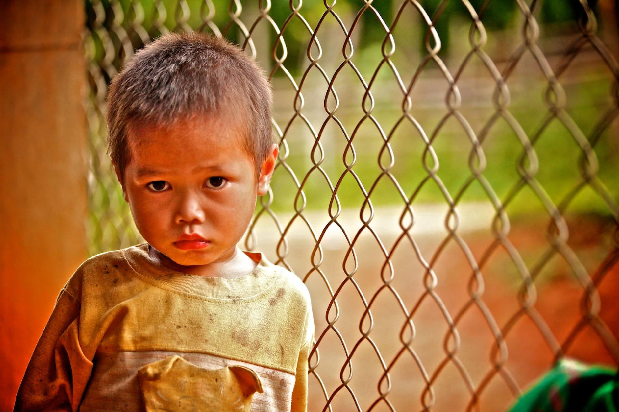 Fence and a Boy by Mark Jacobs
