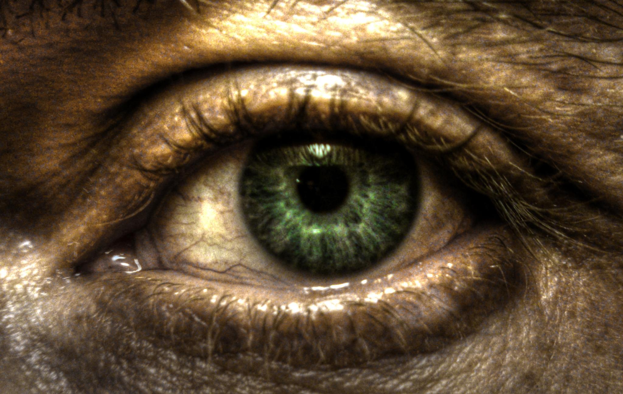 Eye see you by OscarH