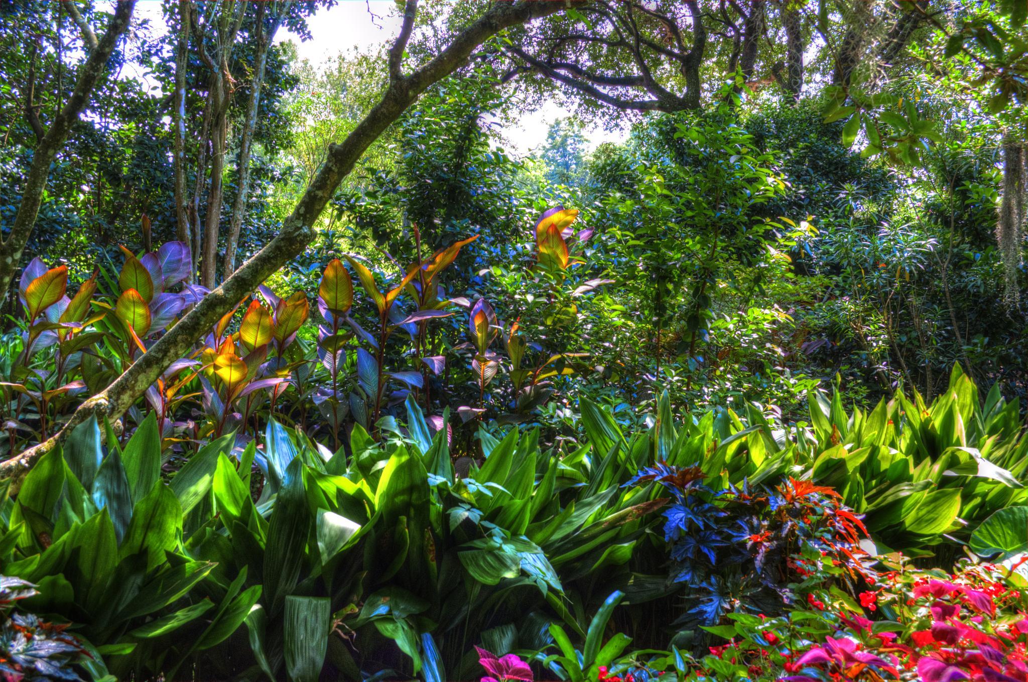 Houmas Garden by kersten.conway