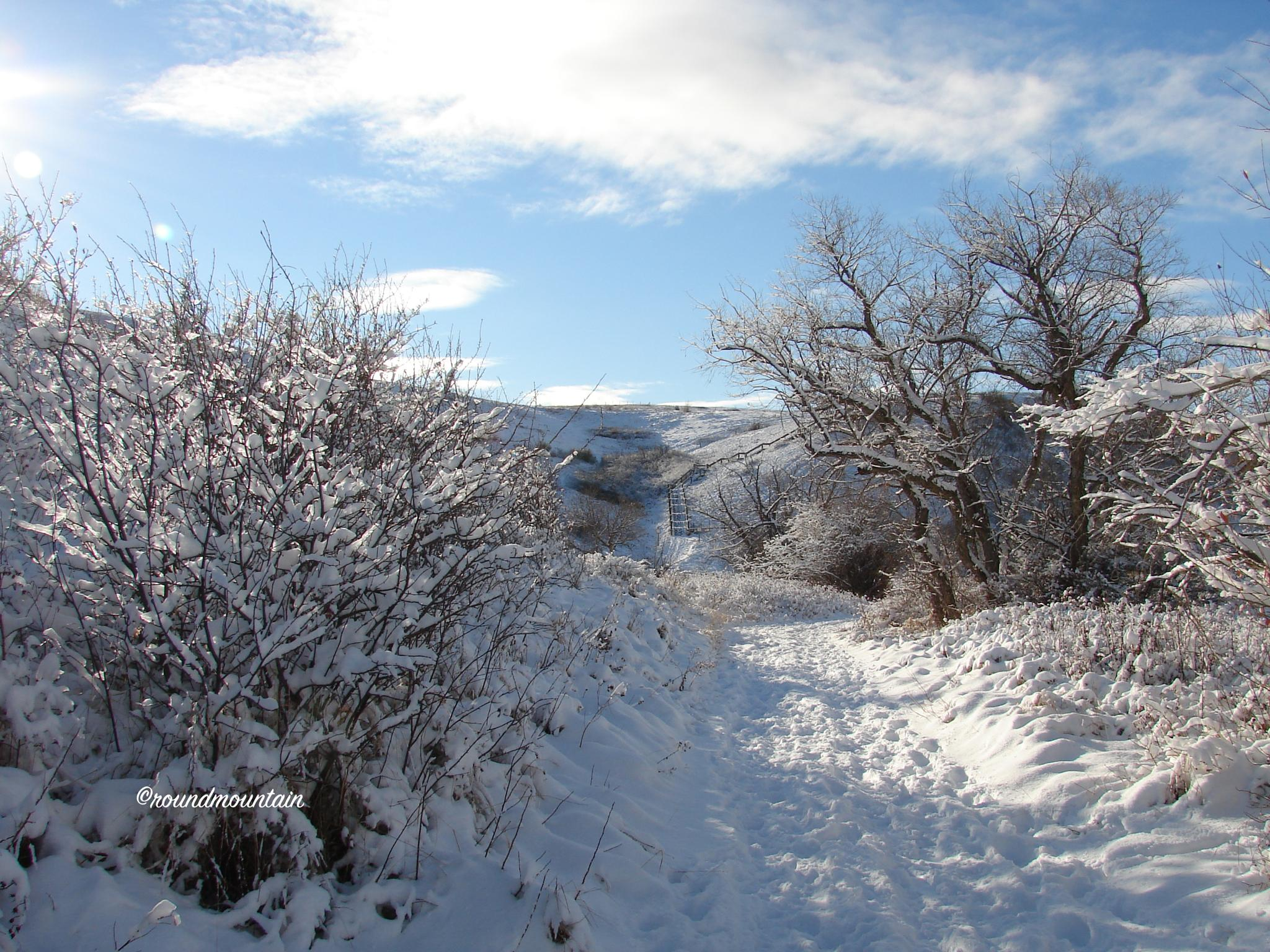 A Winter's Day by rndmtn