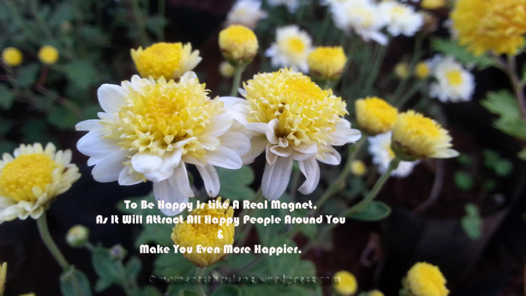 Be Happy Be Magnet by MomentsThruLens