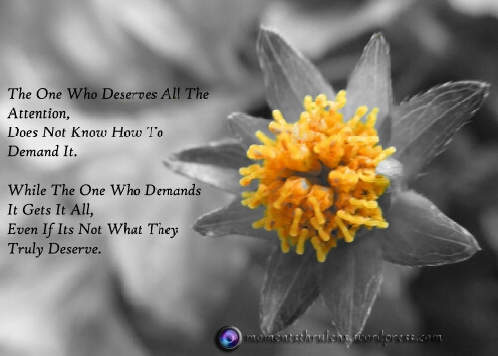 Know aht you deserve by MomentsThruLens