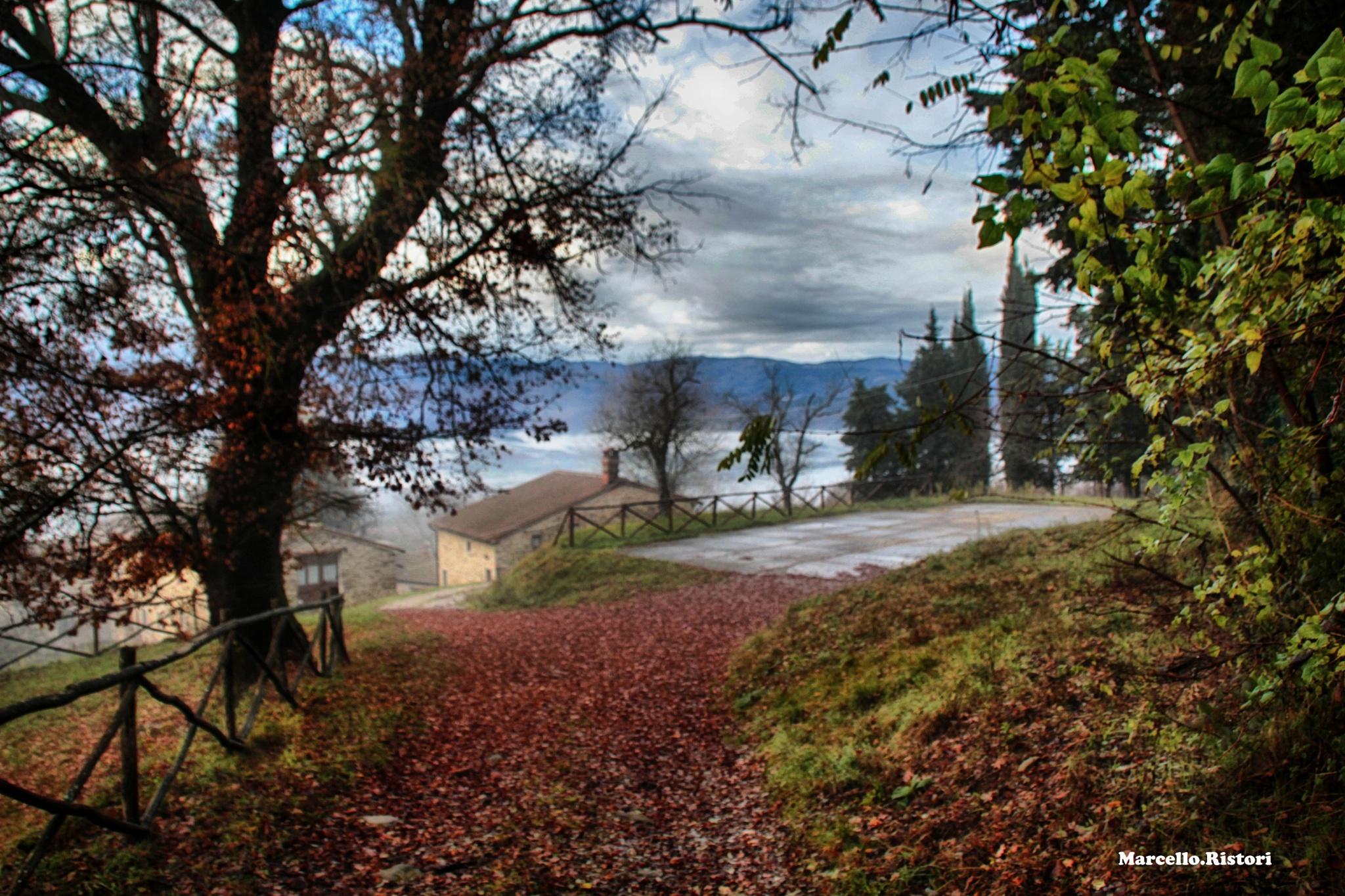Primi sprazzi d'autunno by marcello.ristori