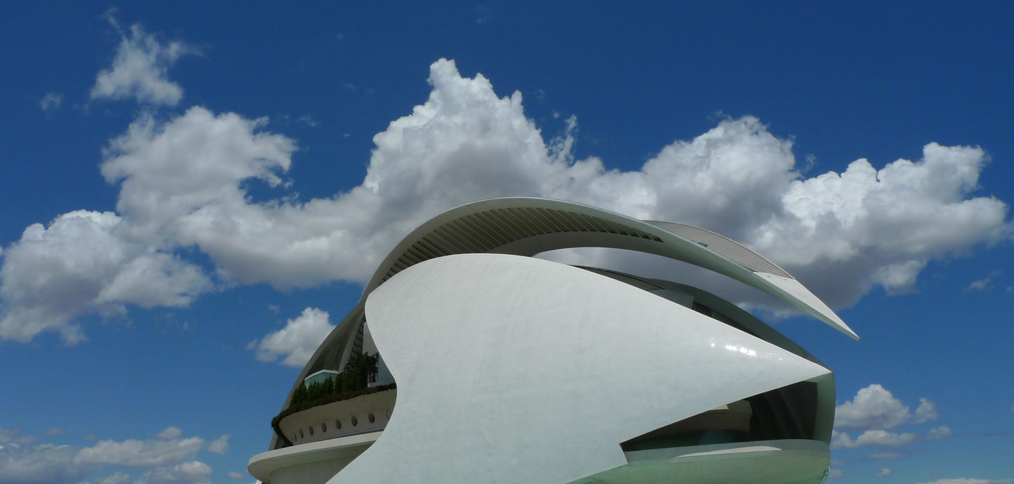 Ciutat de les Arts i les Ciències. València by bescosx