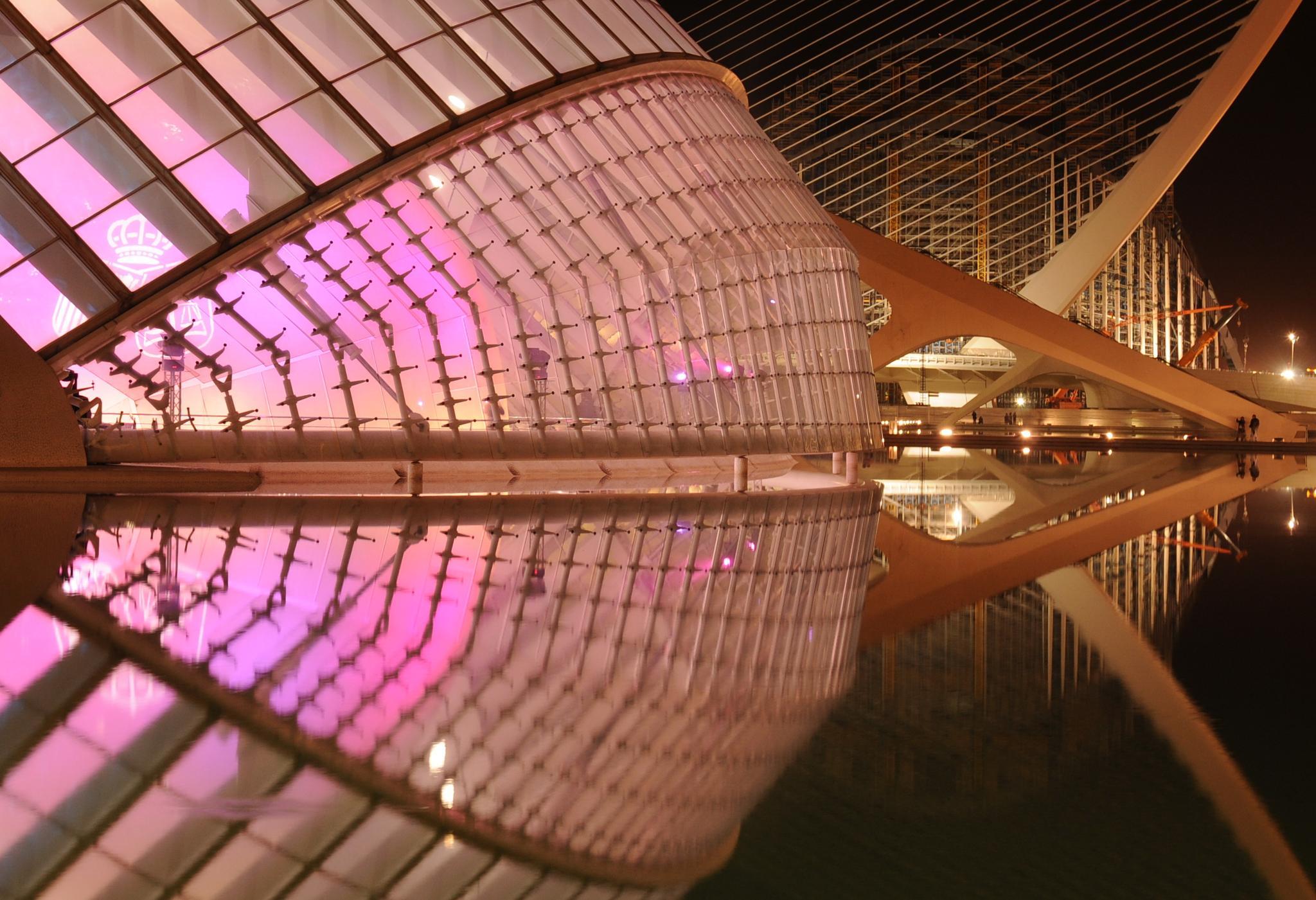 Ciutat de les Arts i de les Ciències. València by bescosx