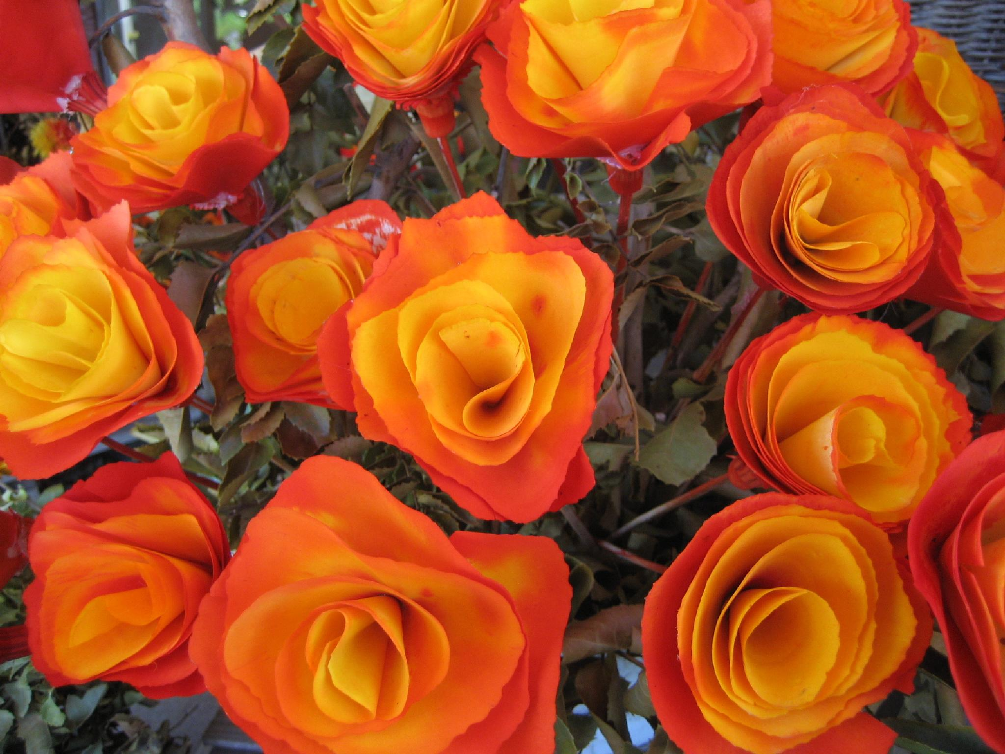 Flors de fusta a Pucón (Chile) by bescosx