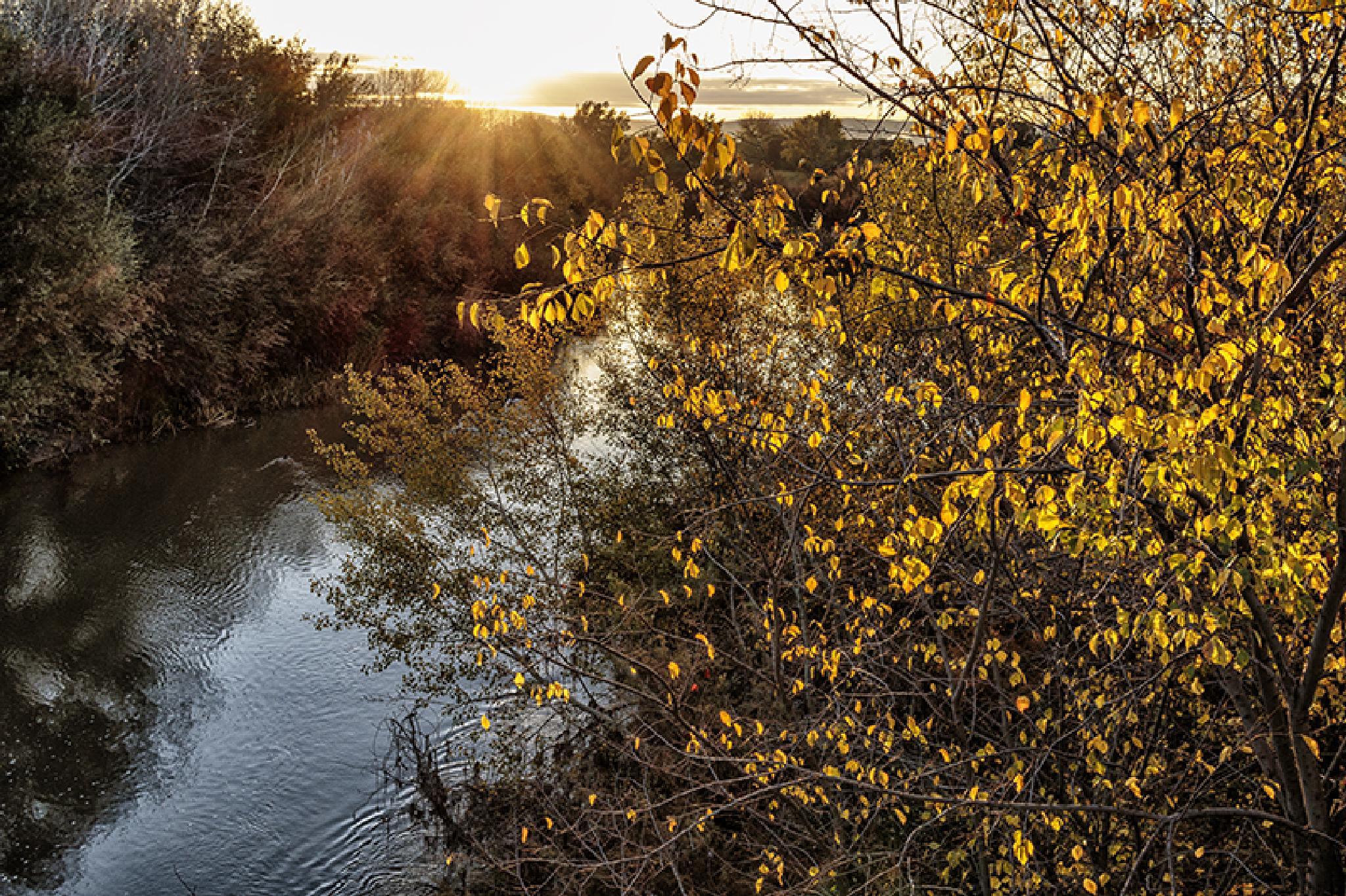 Amanece en el río by escribeafer