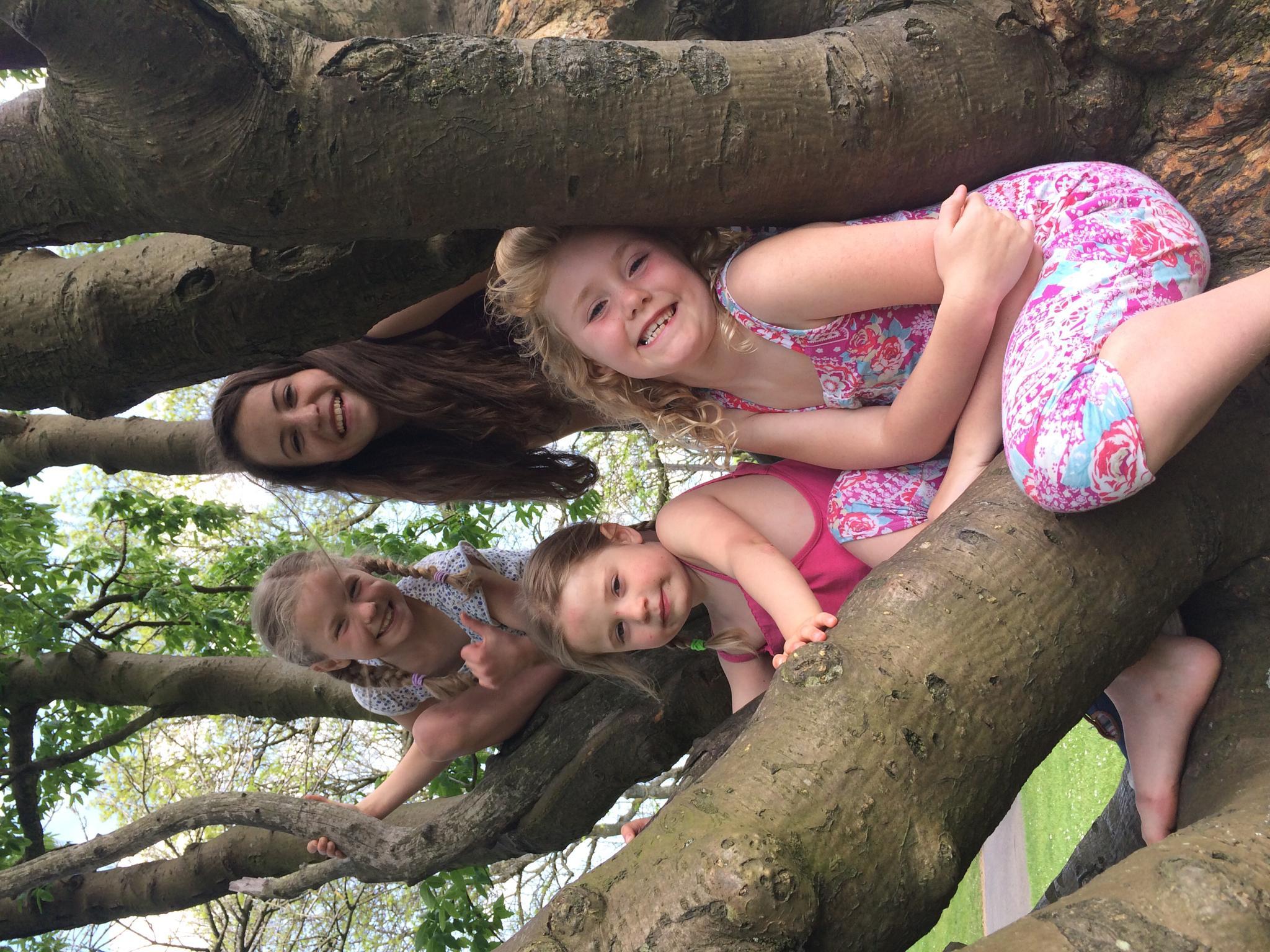 Family Tree by Fi Ona H