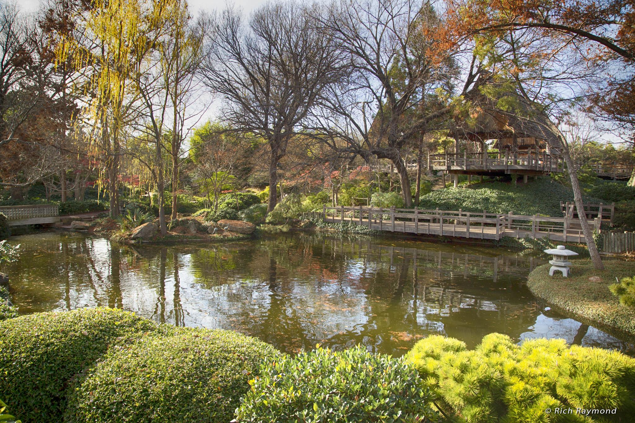 Japanese Gardens Botanical Gardens Fort Worth Texas by RichRaymondFromNJ