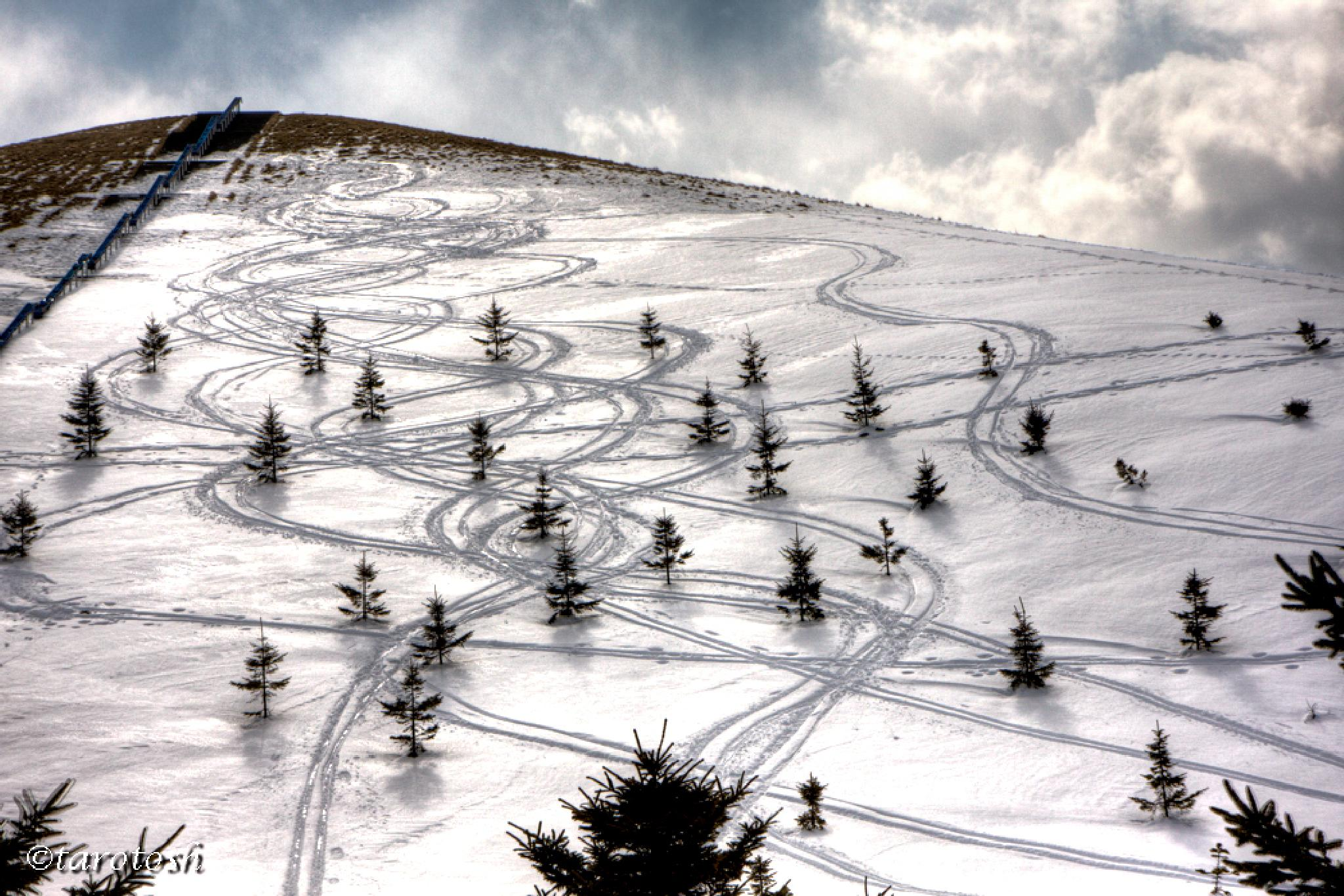 ski tracks by tarosh