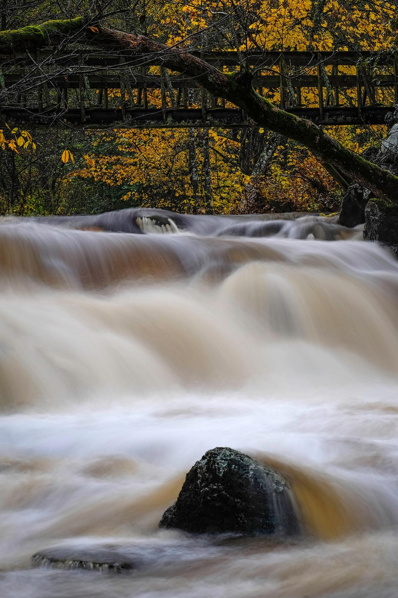 Autumn flow by Henrik Wanders
