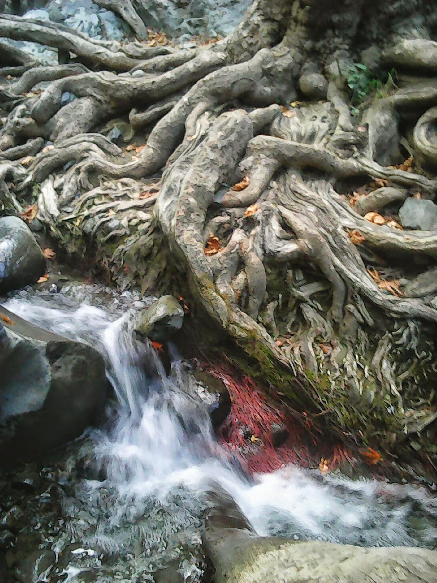 Milomeri waterfall by HelenD