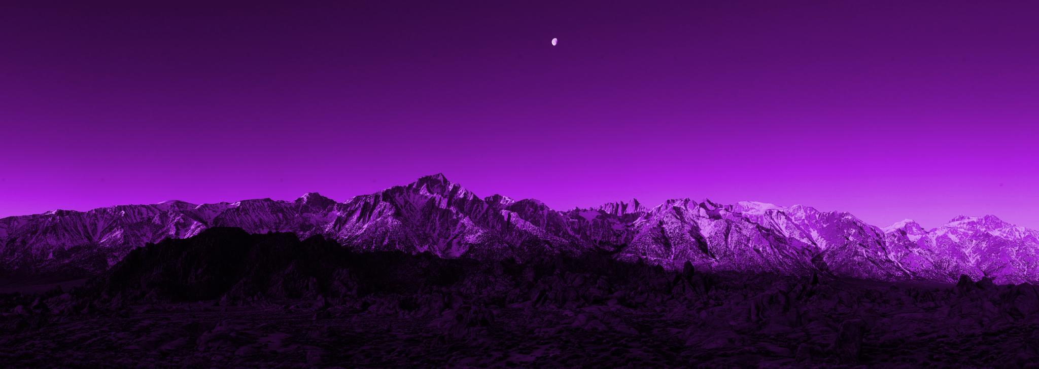 purple world by Zarina Gharghash