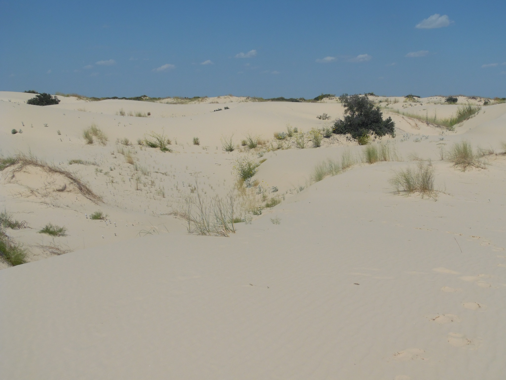 Dunes by john.fisher.7315