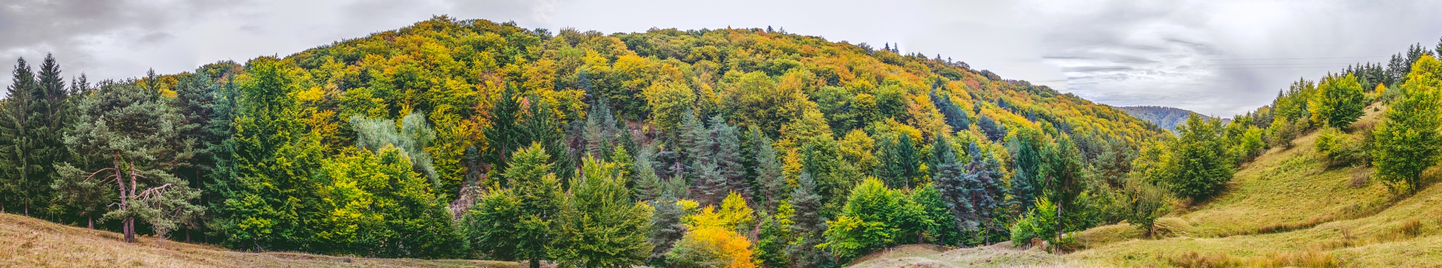 Autumn panorama by IonutAlexandru