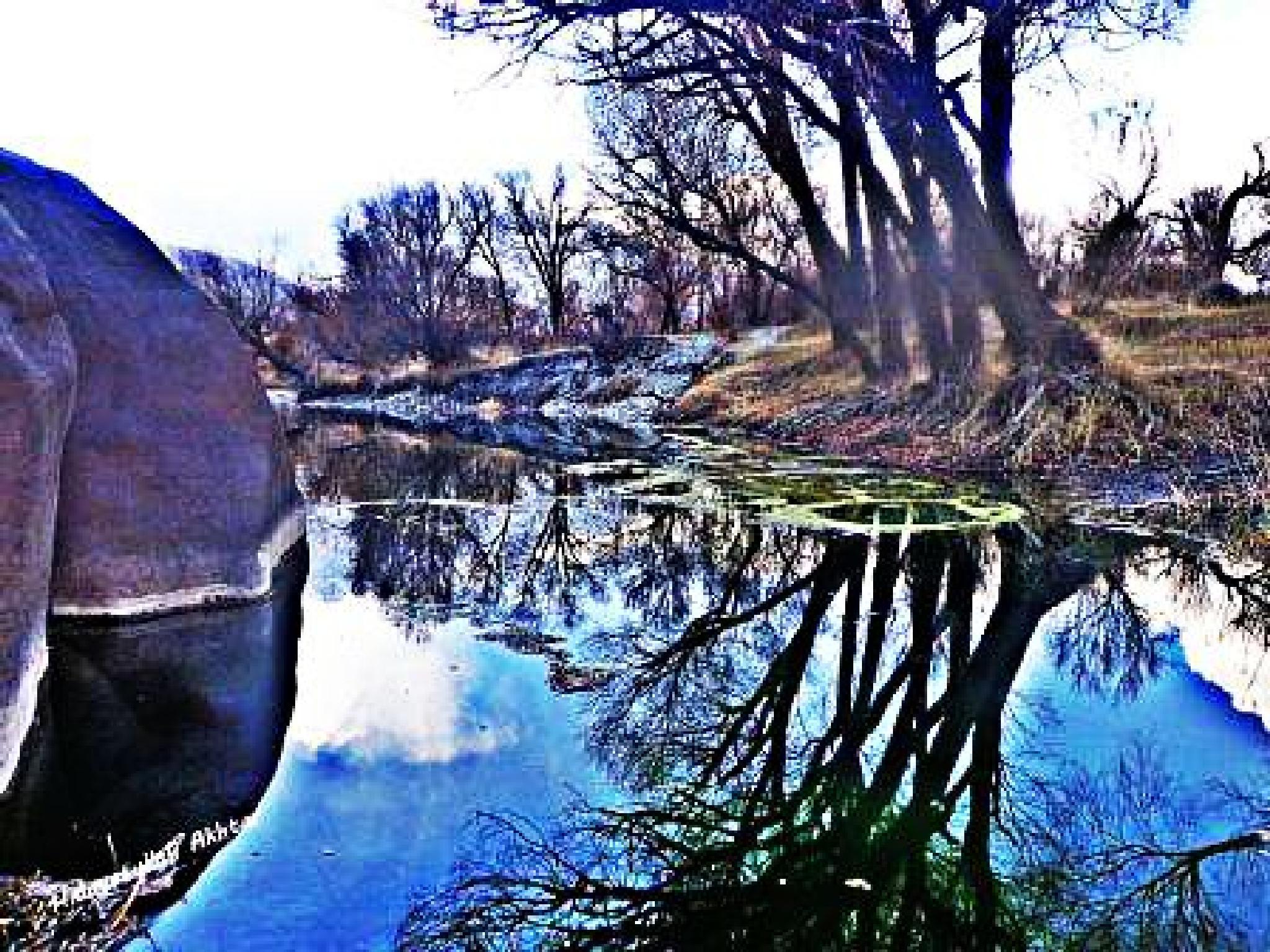 Trees Reflection by  Hidayatullah Akhtar