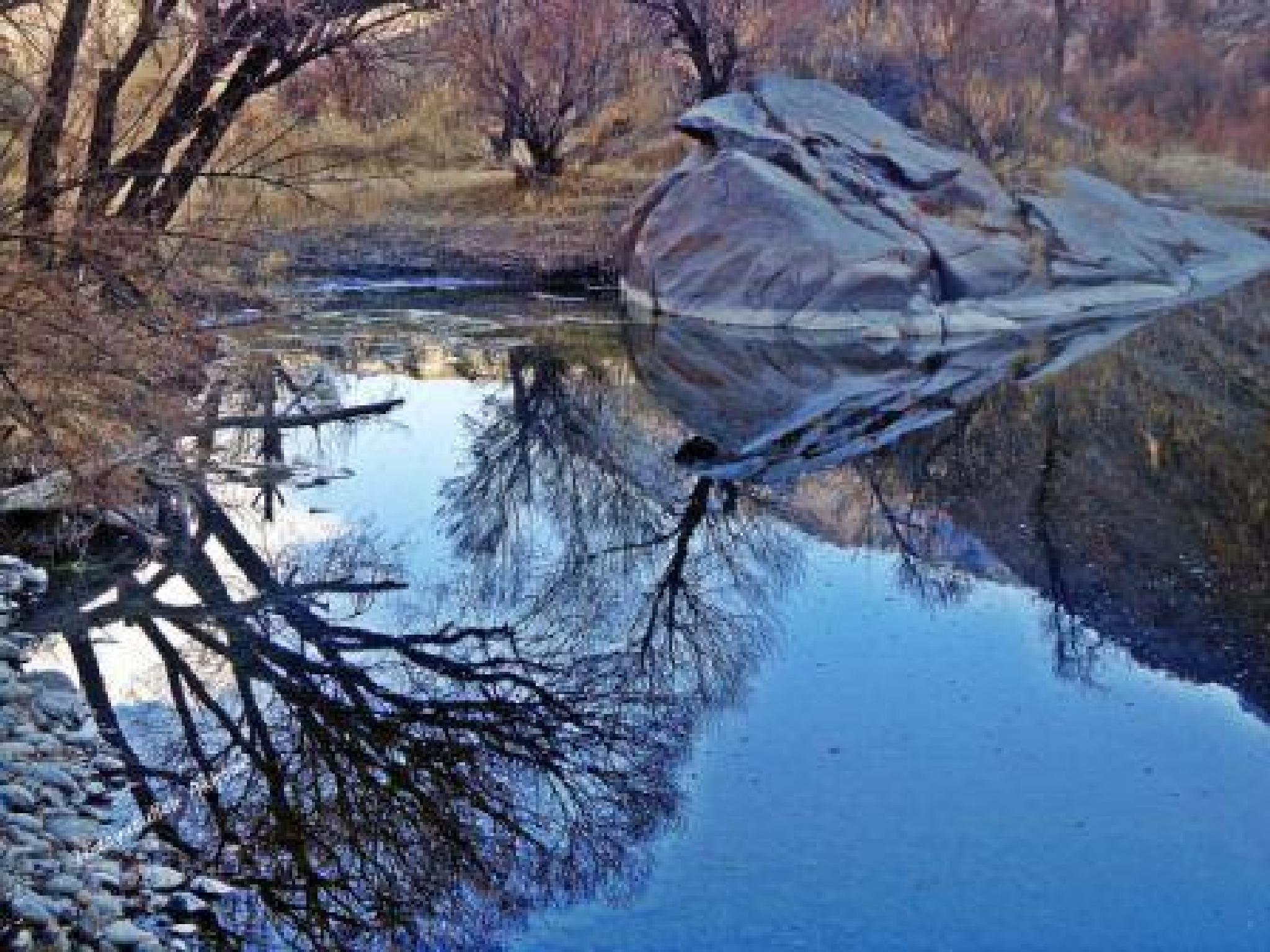 Reflection by  Hidayatullah Akhtar