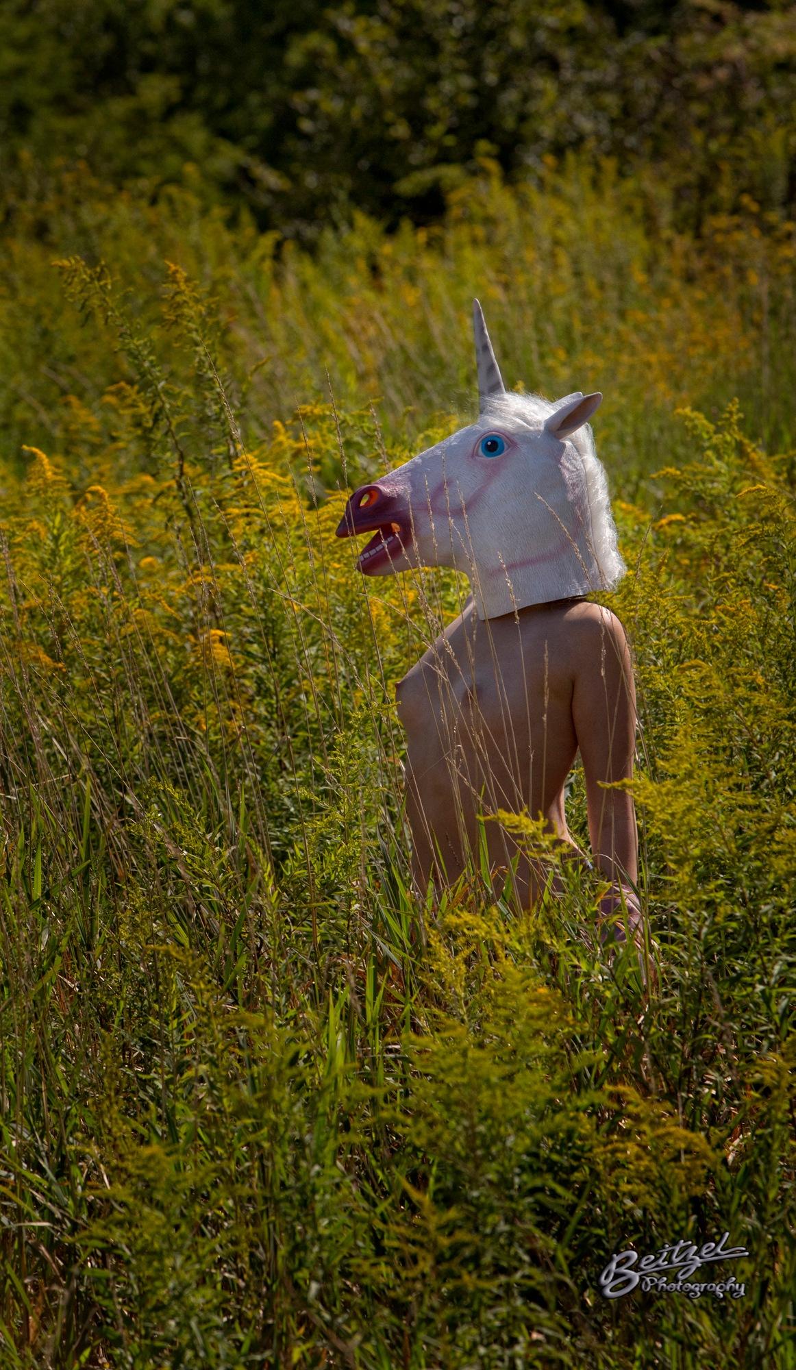 Unicorn by rich.beitzel.3