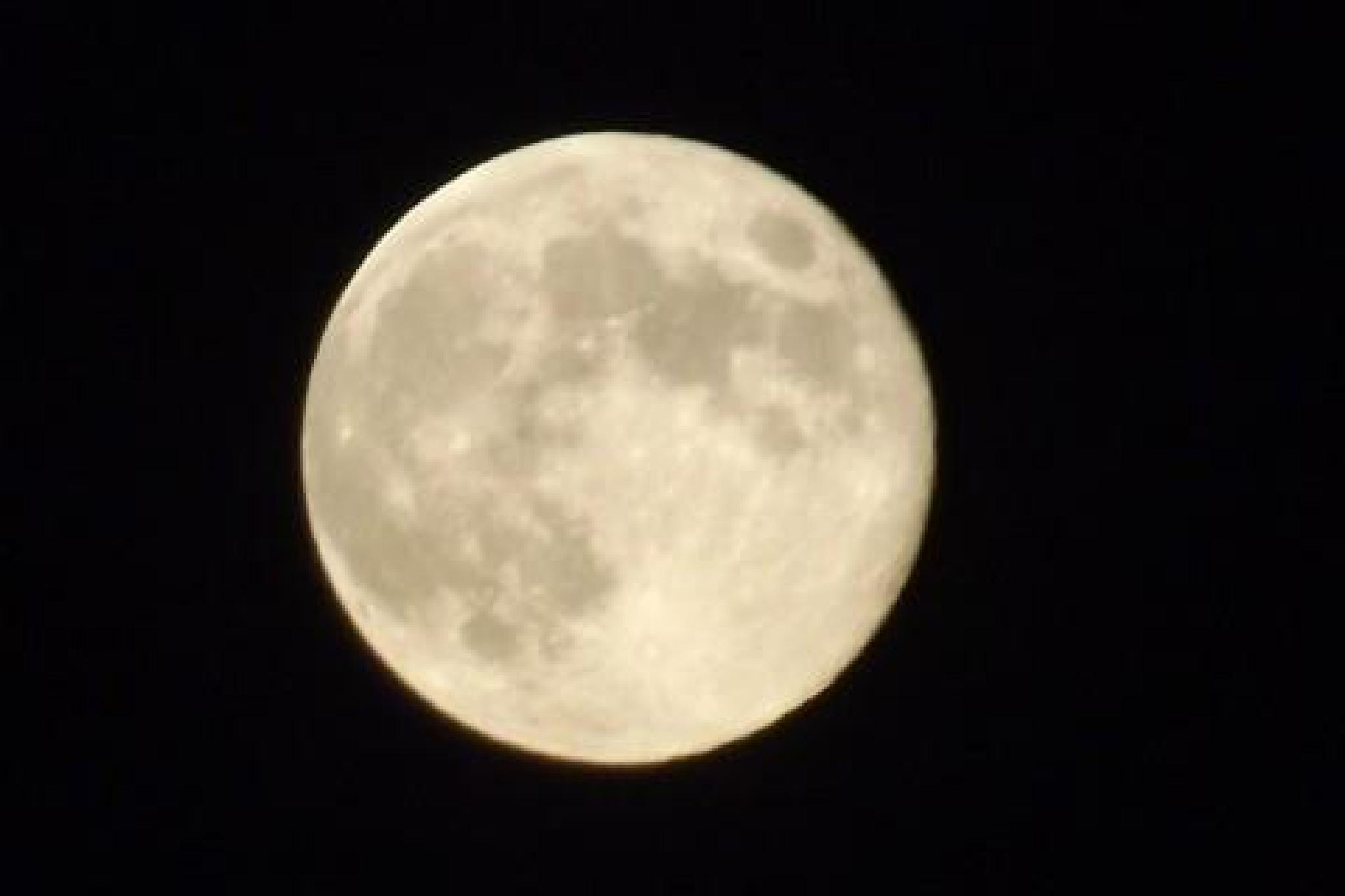 Blue Moon over Colorado by VernaSueForsgren