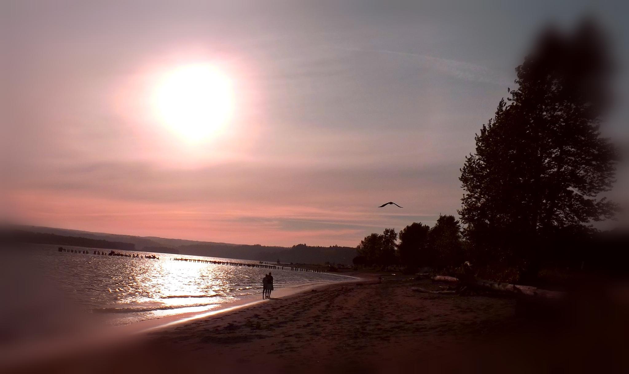 Early evening stroll by VernaSueForsgren