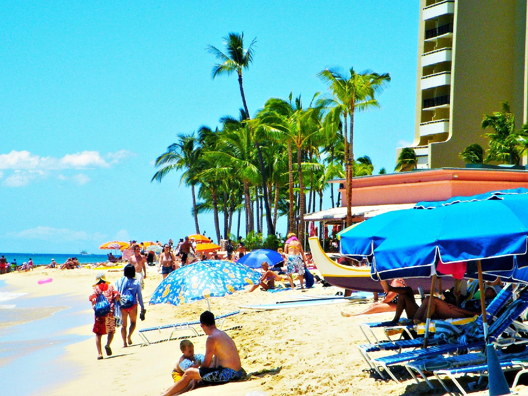 Waikiki Beach by Laura J. Vazquez