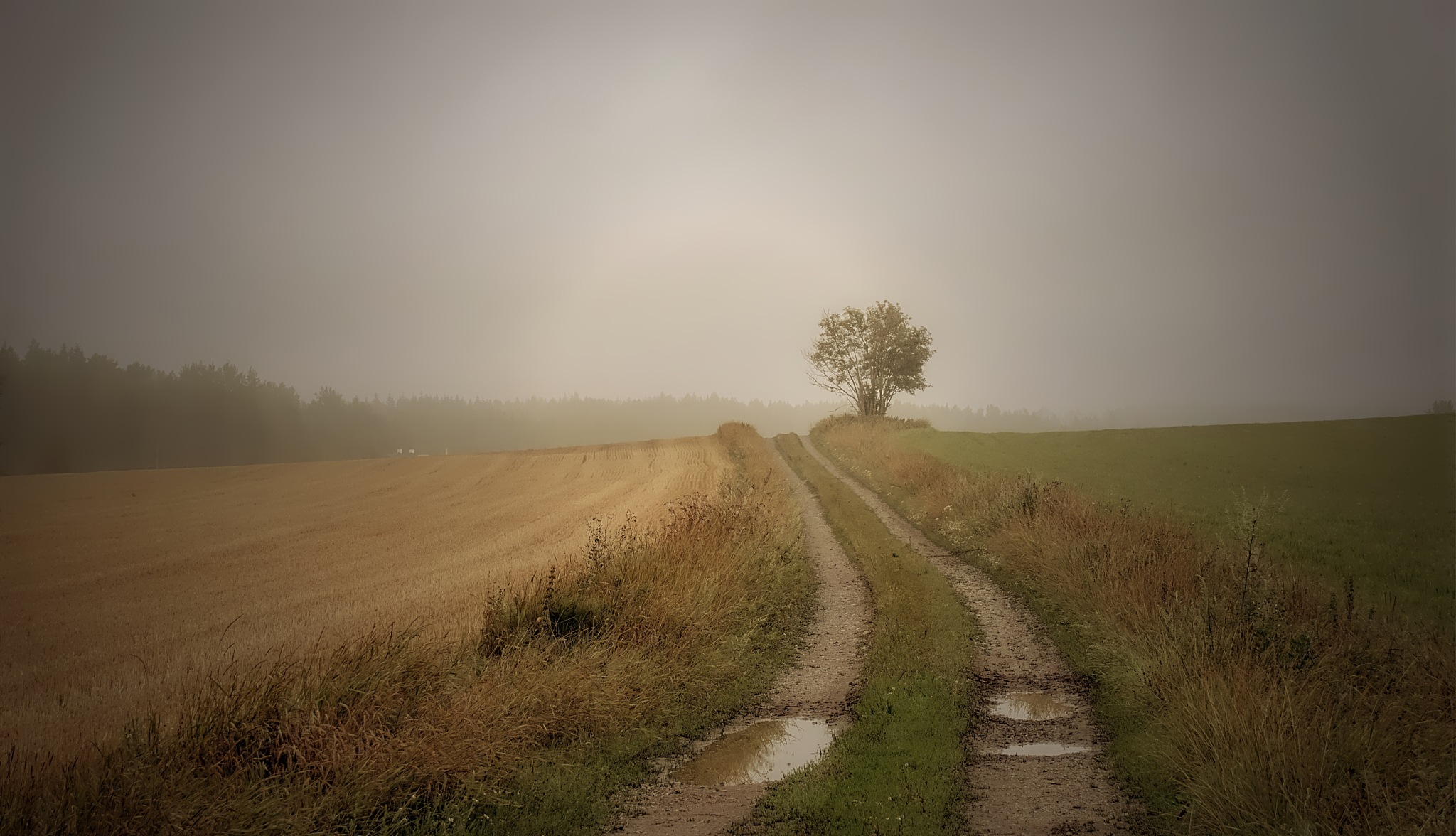 Early autumn this year. by rockorbach