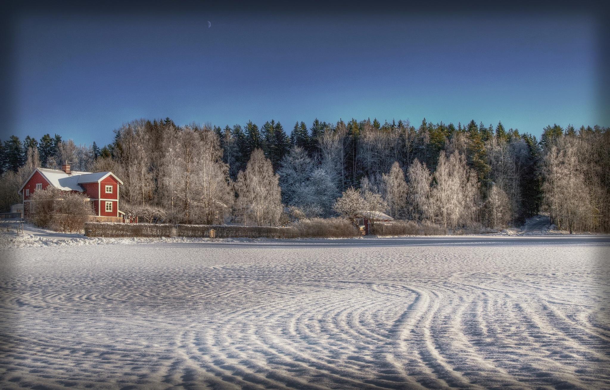 Winter by rockorbach