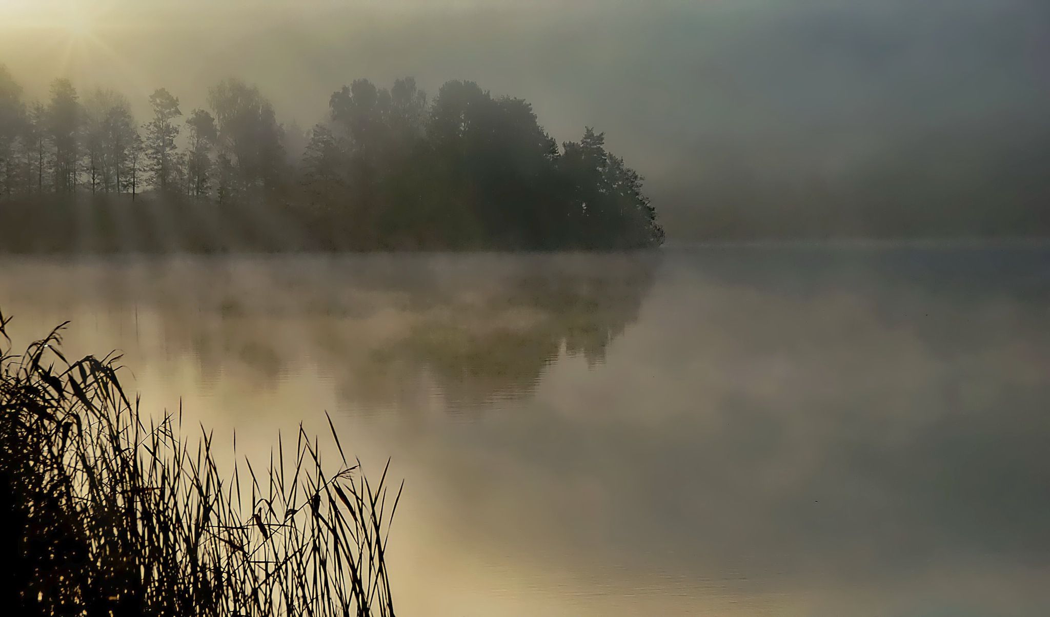 Fog at the lake. by rockorbach