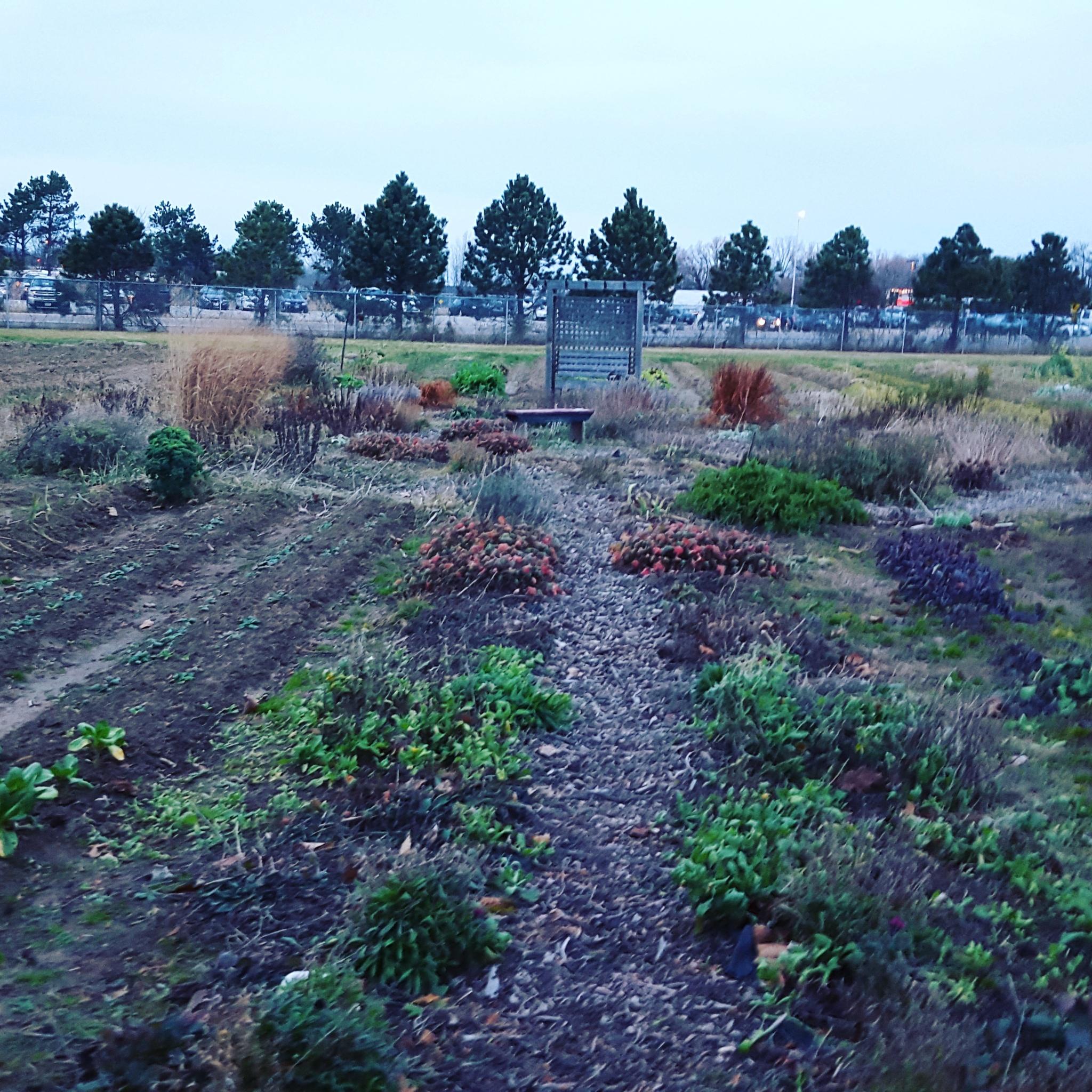 Roots Up maze by RegSoper