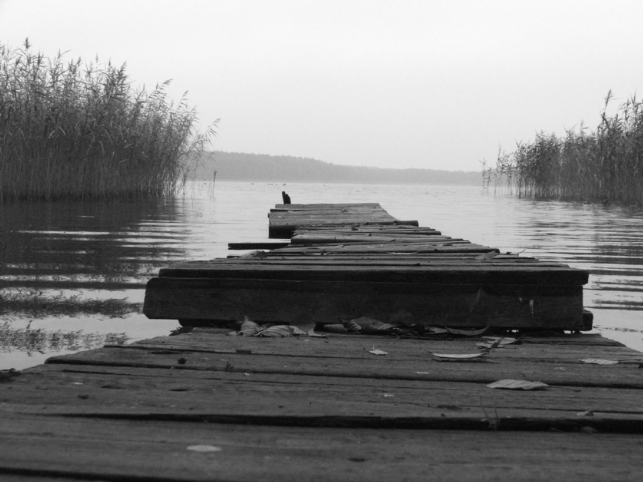 Gray day, bad mood... by MarzannaHartwich