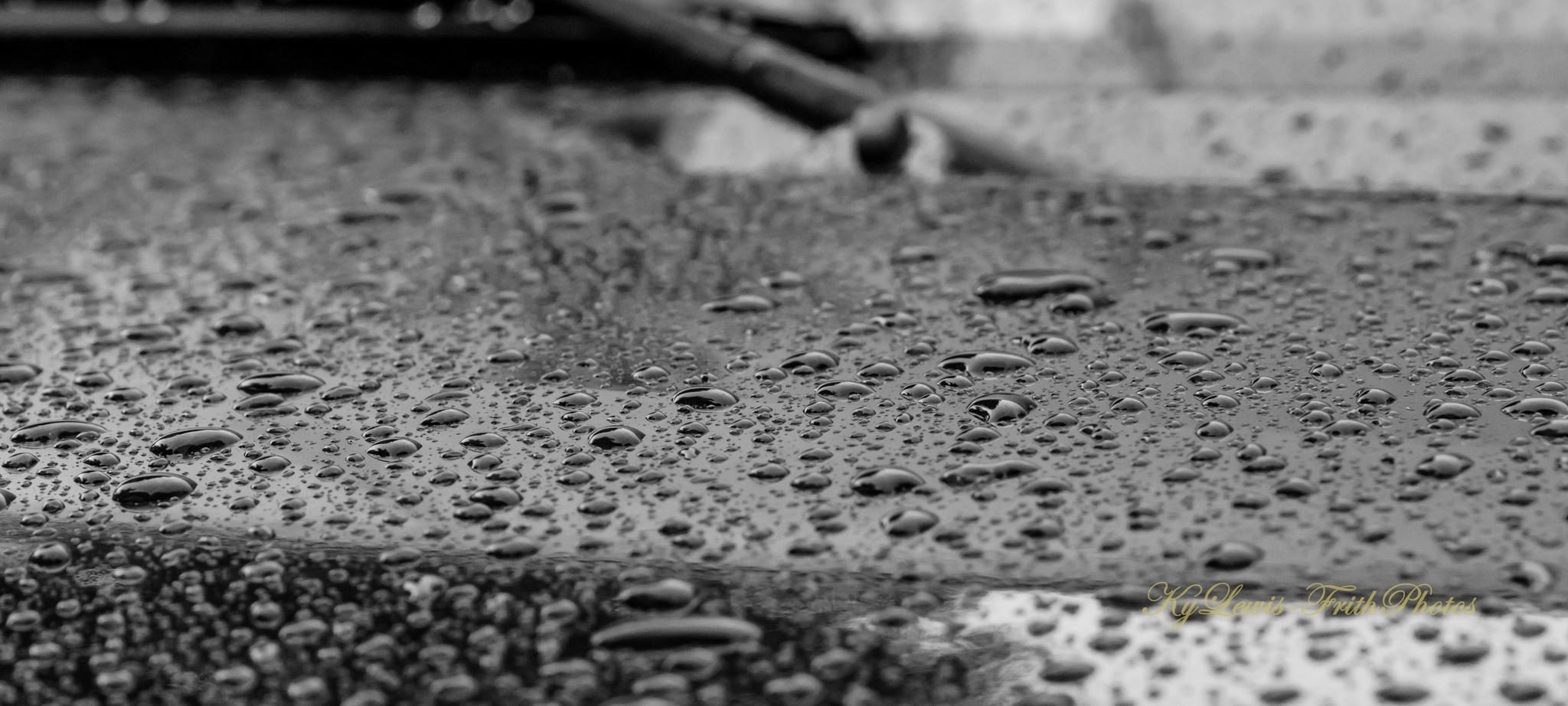summer rain  by LQQKLEWIS