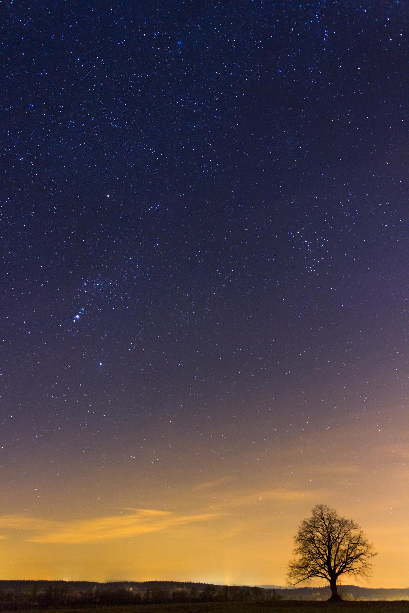 ~Sky full of Stars~ by jan.roempp