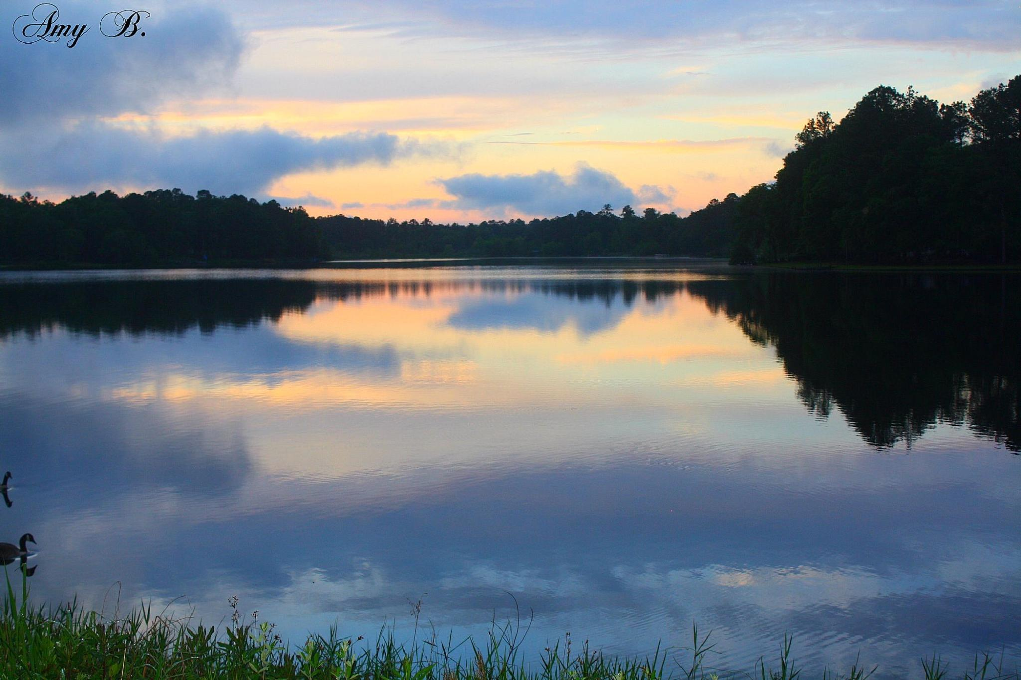 Blue sky reflected in lake by amy.conger.9