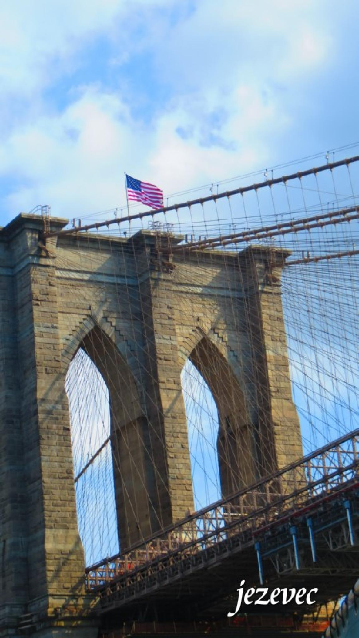 Brooklyn Bridge 2014-07-20 0737 by jezevec40