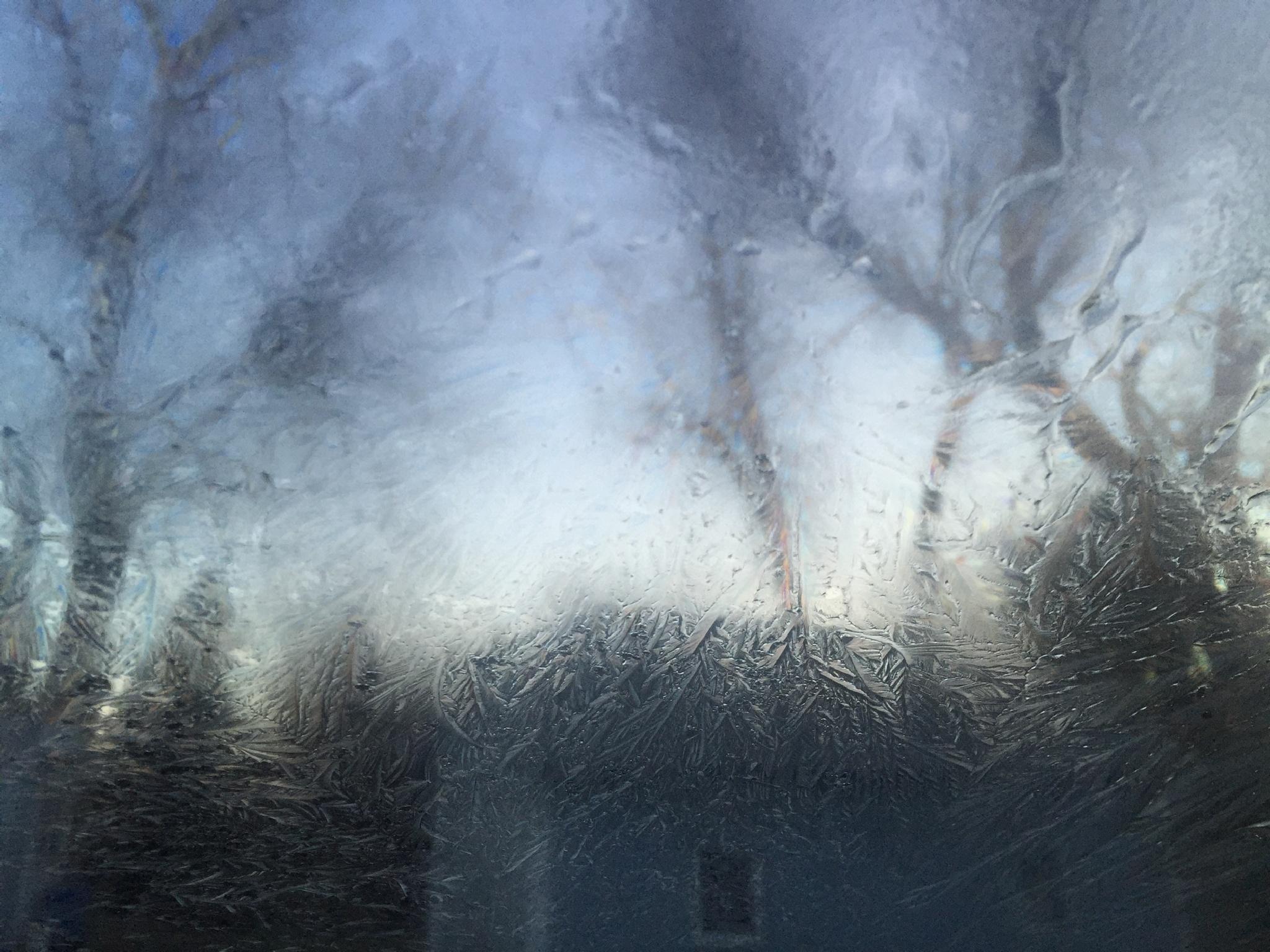 Frosty fog by cboehlkejr