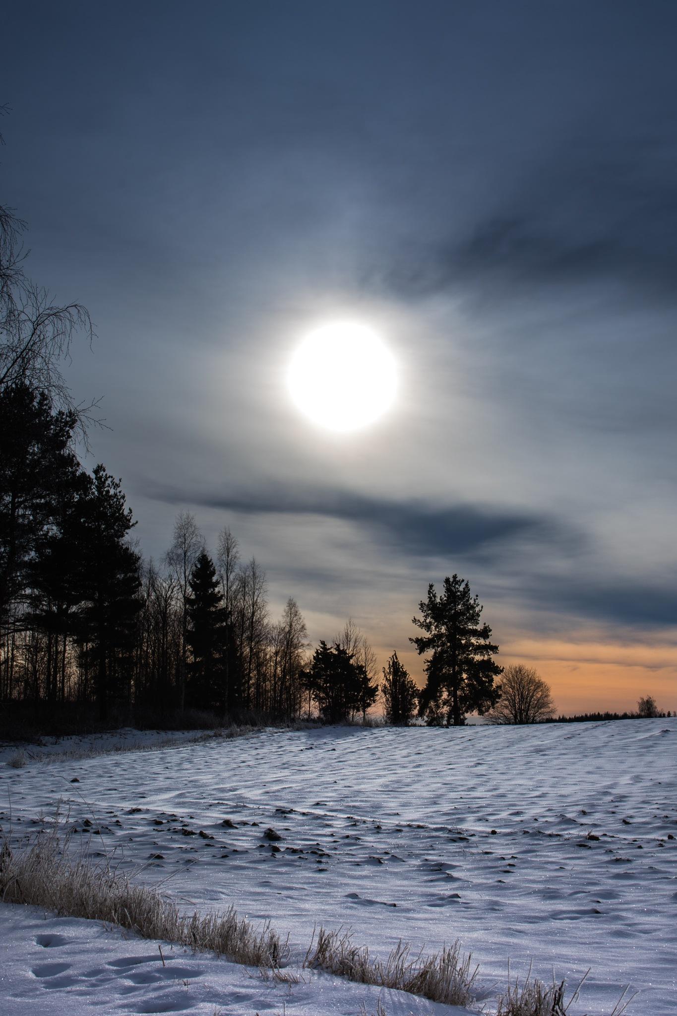 Enchanted afternoon by Linda Myrberg