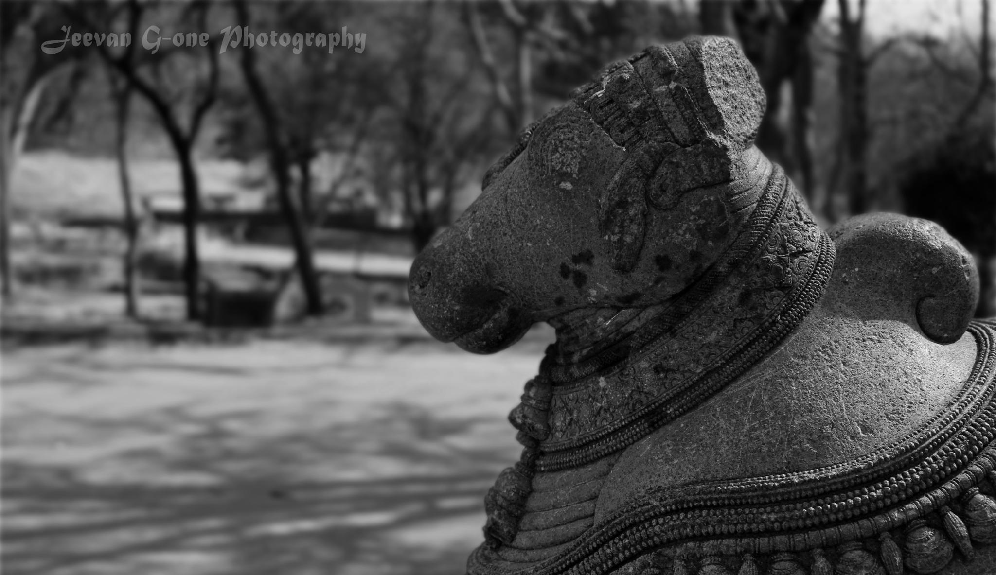 Basava Sculpture. by Jeevan G-one