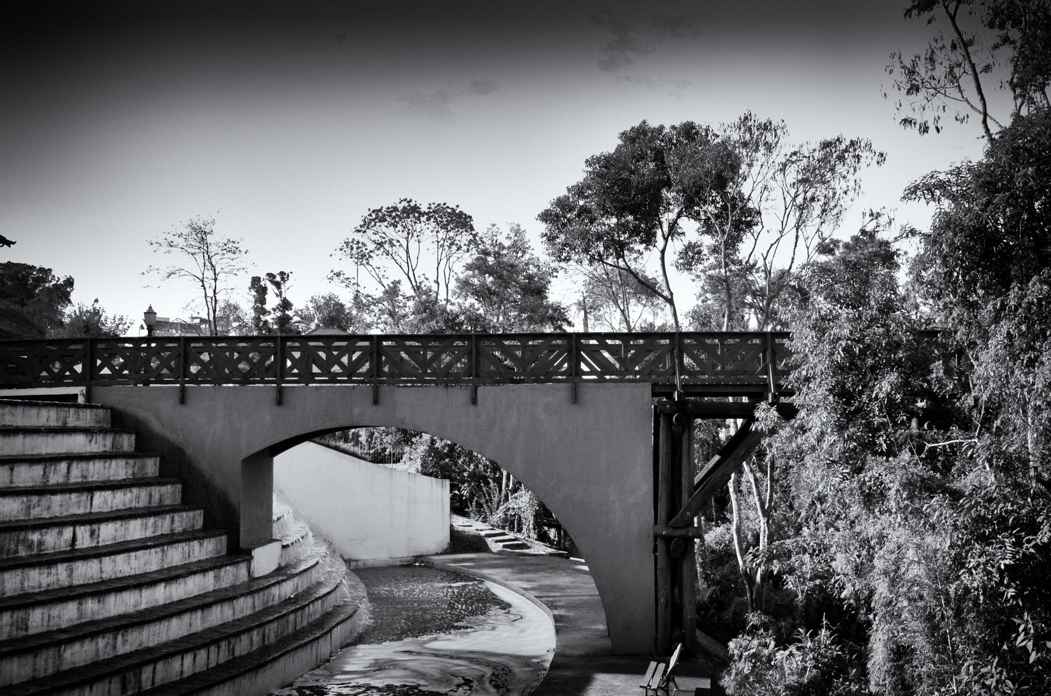 small bridge by Thiago Alessandre