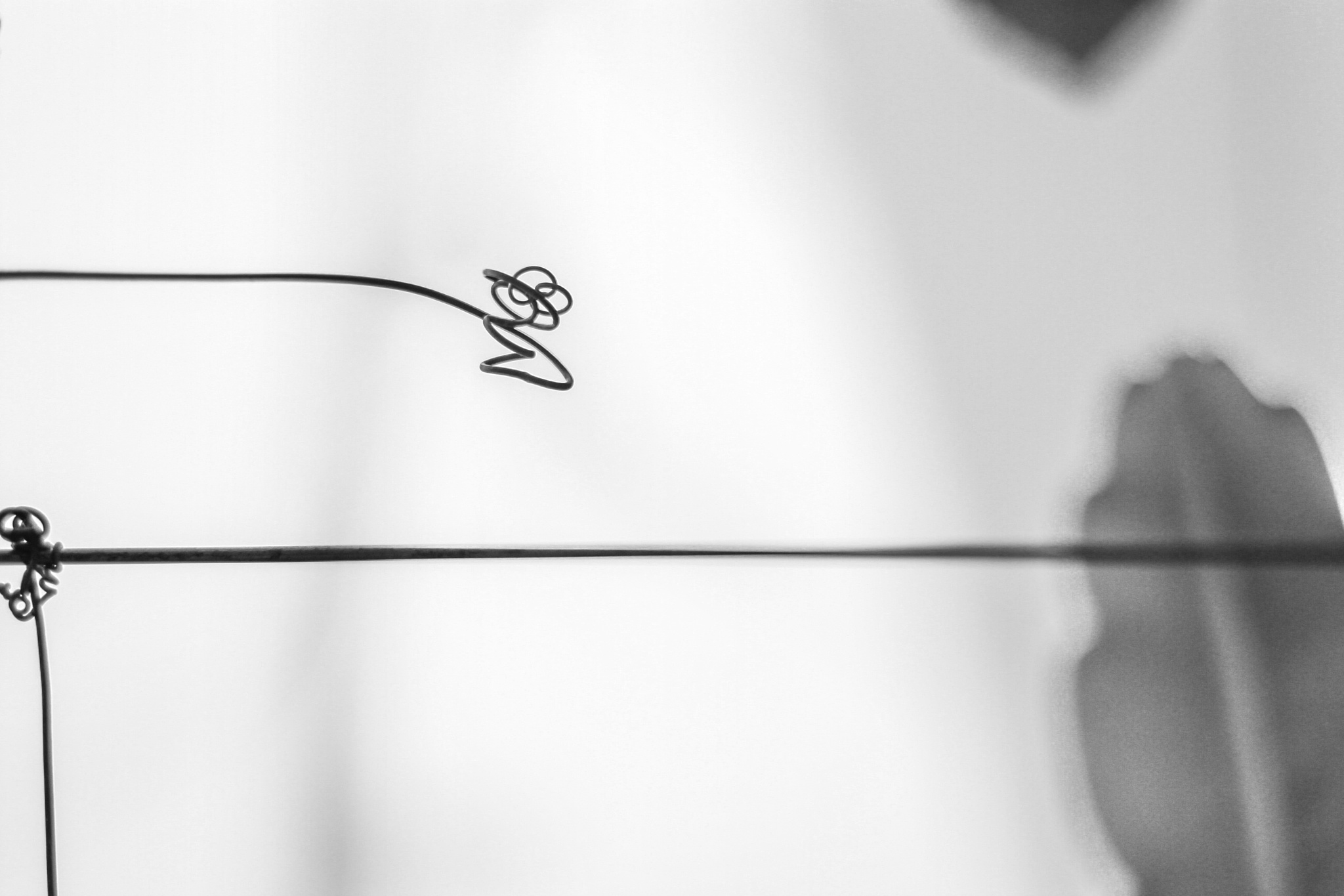 Flat line and confusion by Syafri Gamal