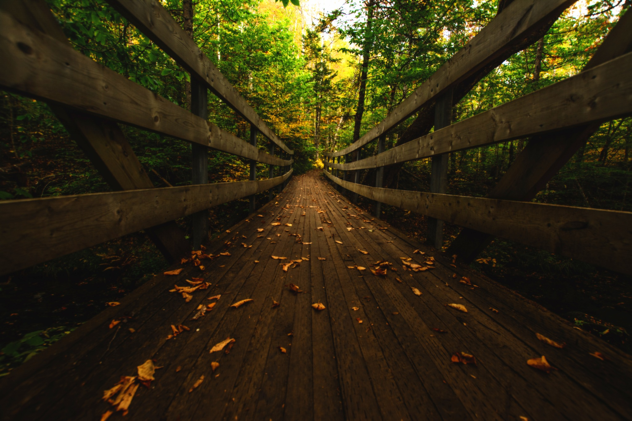 Crossing the River by Jesse Kalberlah