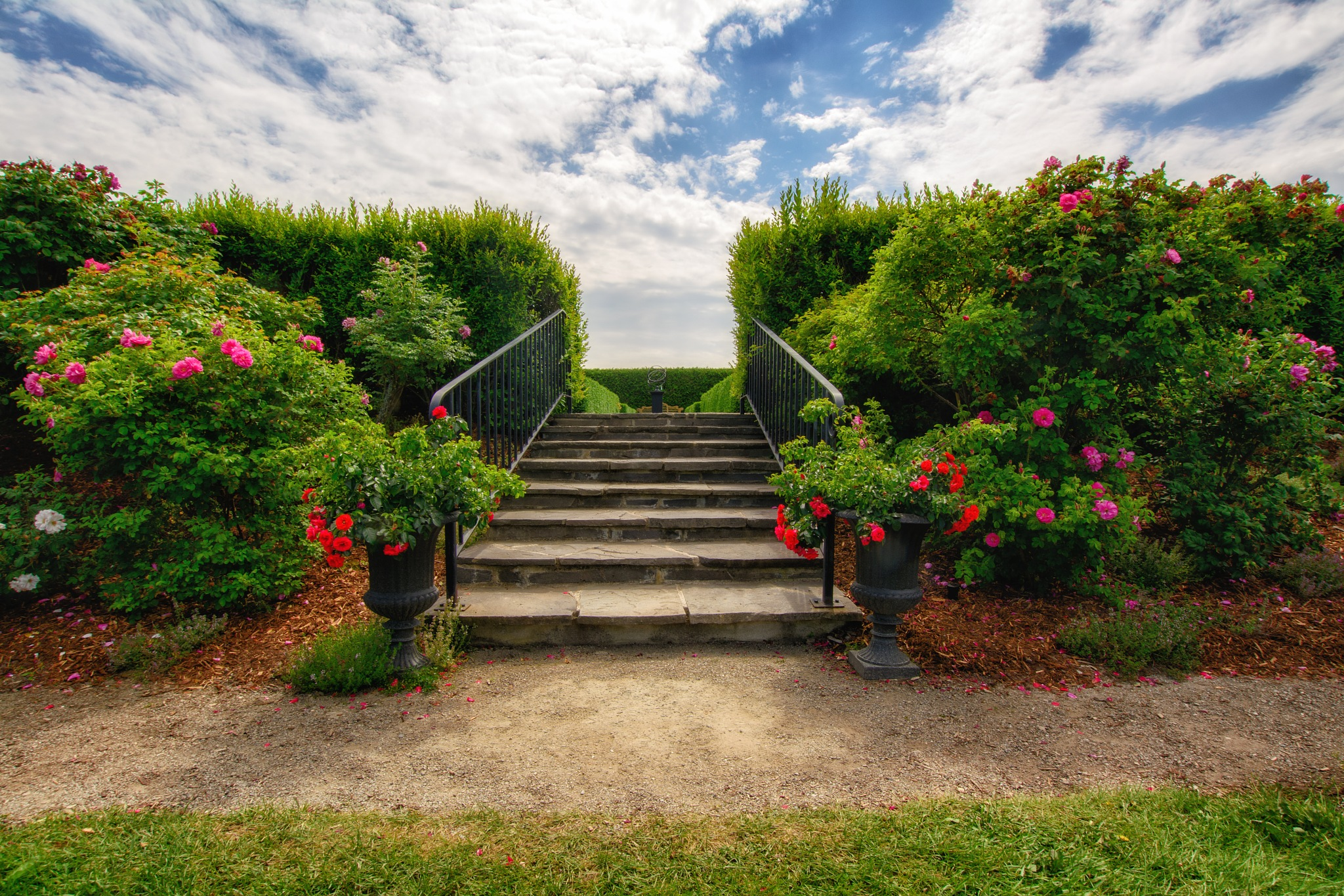 To the Steps by Jesse Kalberlah