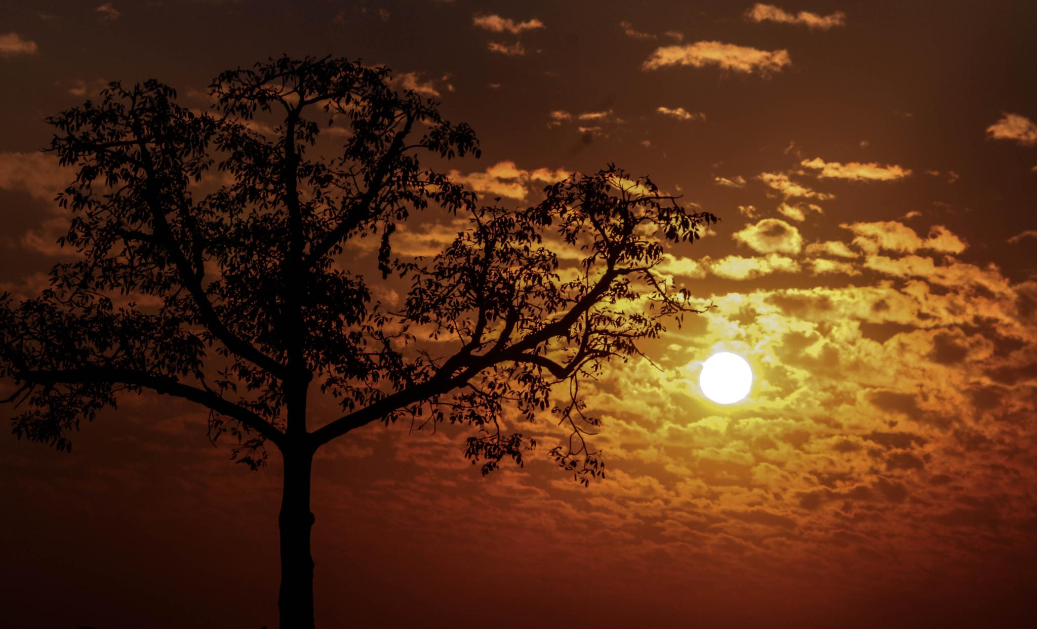 Sunset by P.S: Photography