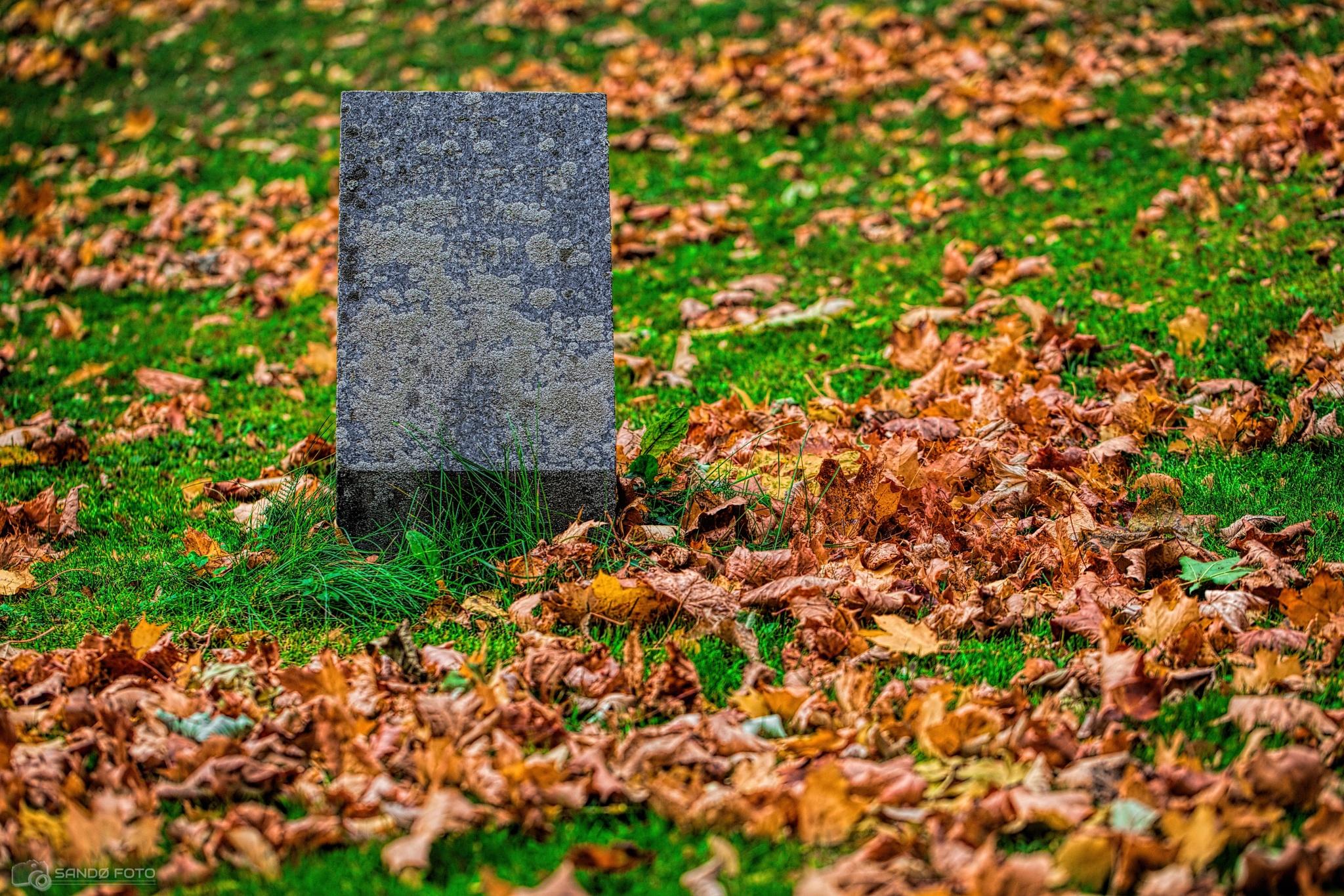 Forgotten tombstone by tjsandofoto