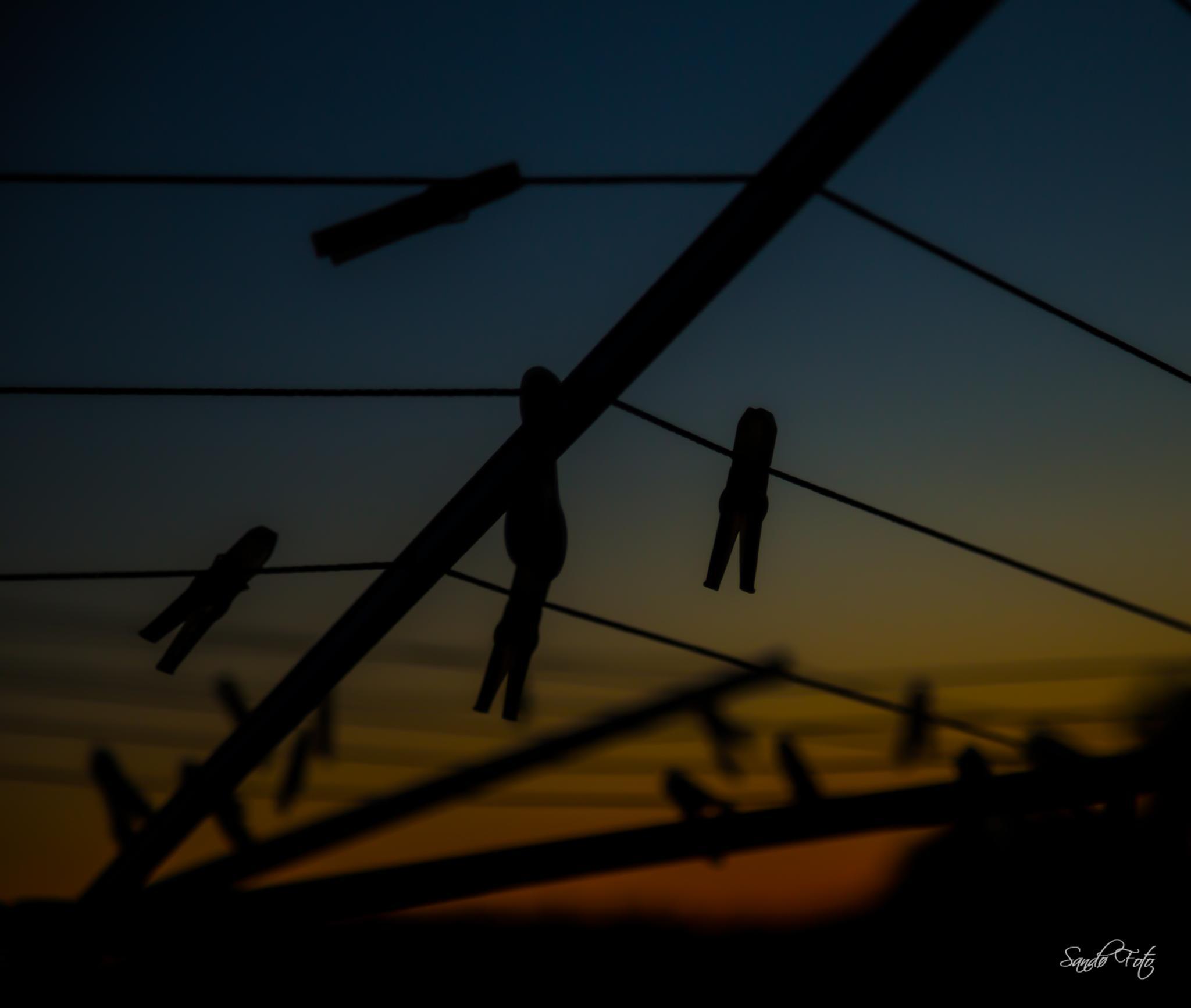 Clothes-pin by tjsandofoto