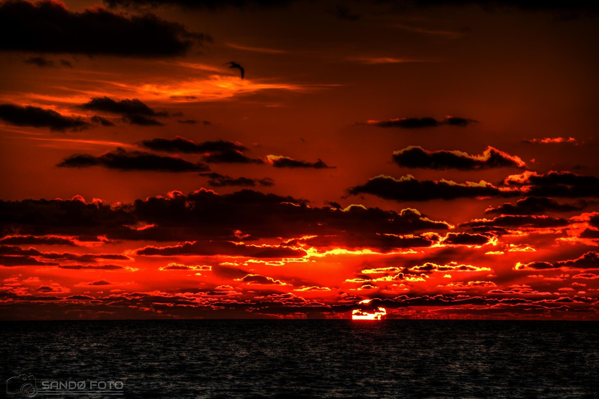 Sunrise, Cancun Mexico. by tjsandofoto