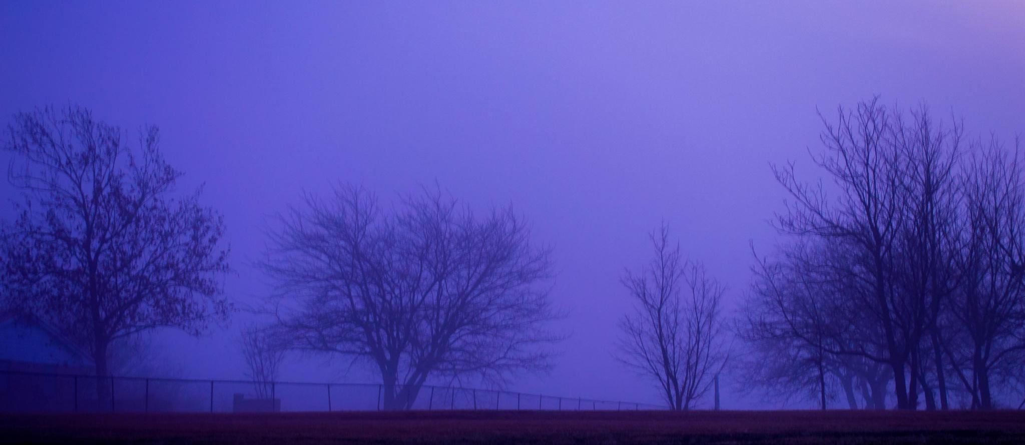 Shadows & fog, Treeline by kenny.peters