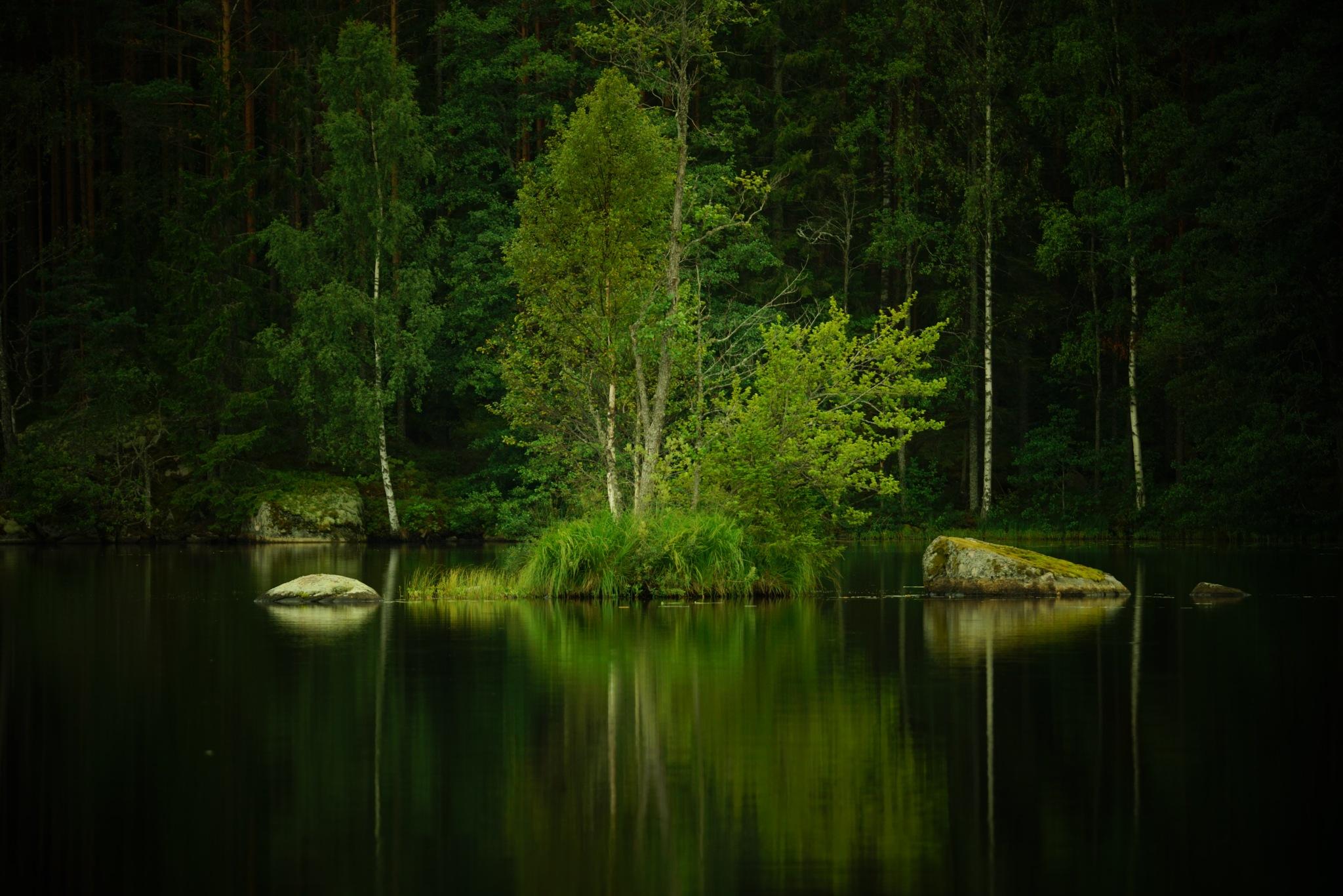 Calm Lake by Andreas Karlsson