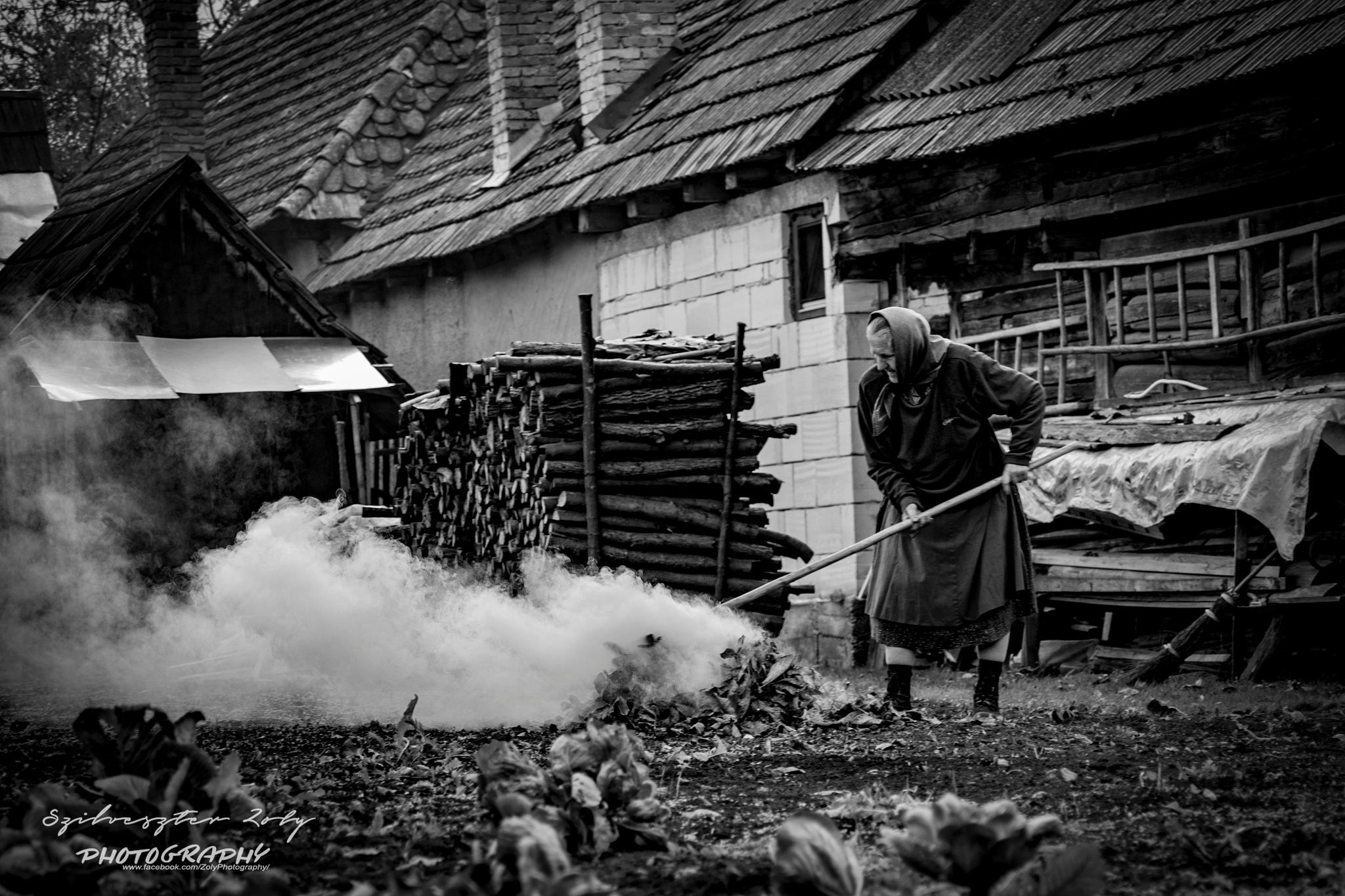 Village life  by Zoly Szilveszter