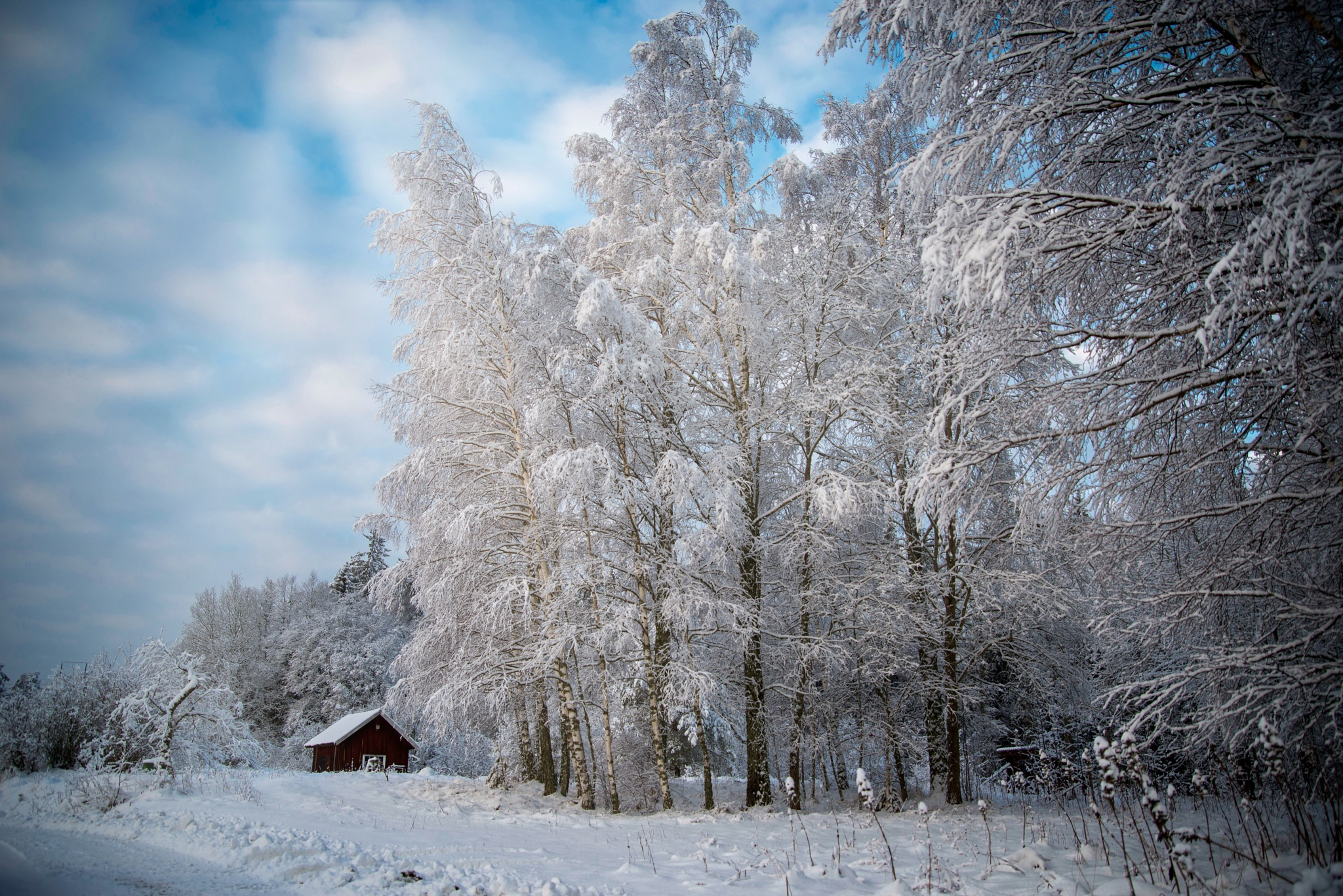 Winterlandscape by Lennart Andersson